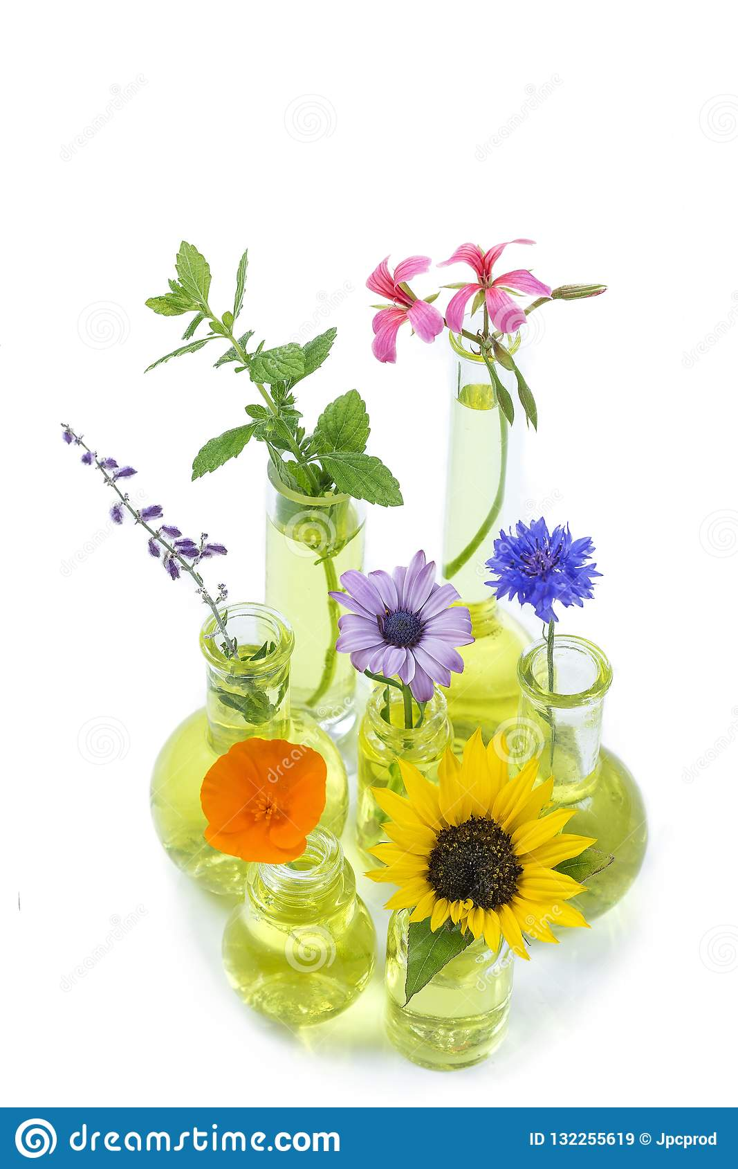Plants In Test Tube And Flask With Medicinal Flowers In Against