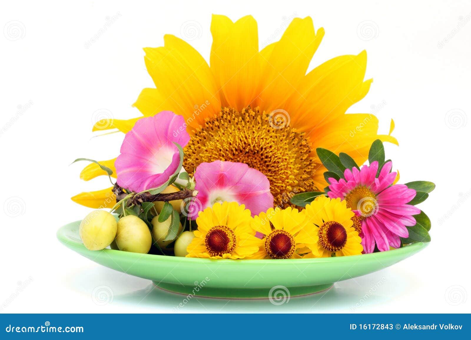 plaque verte avec des fleurs d'août photos stock - image: 16172843