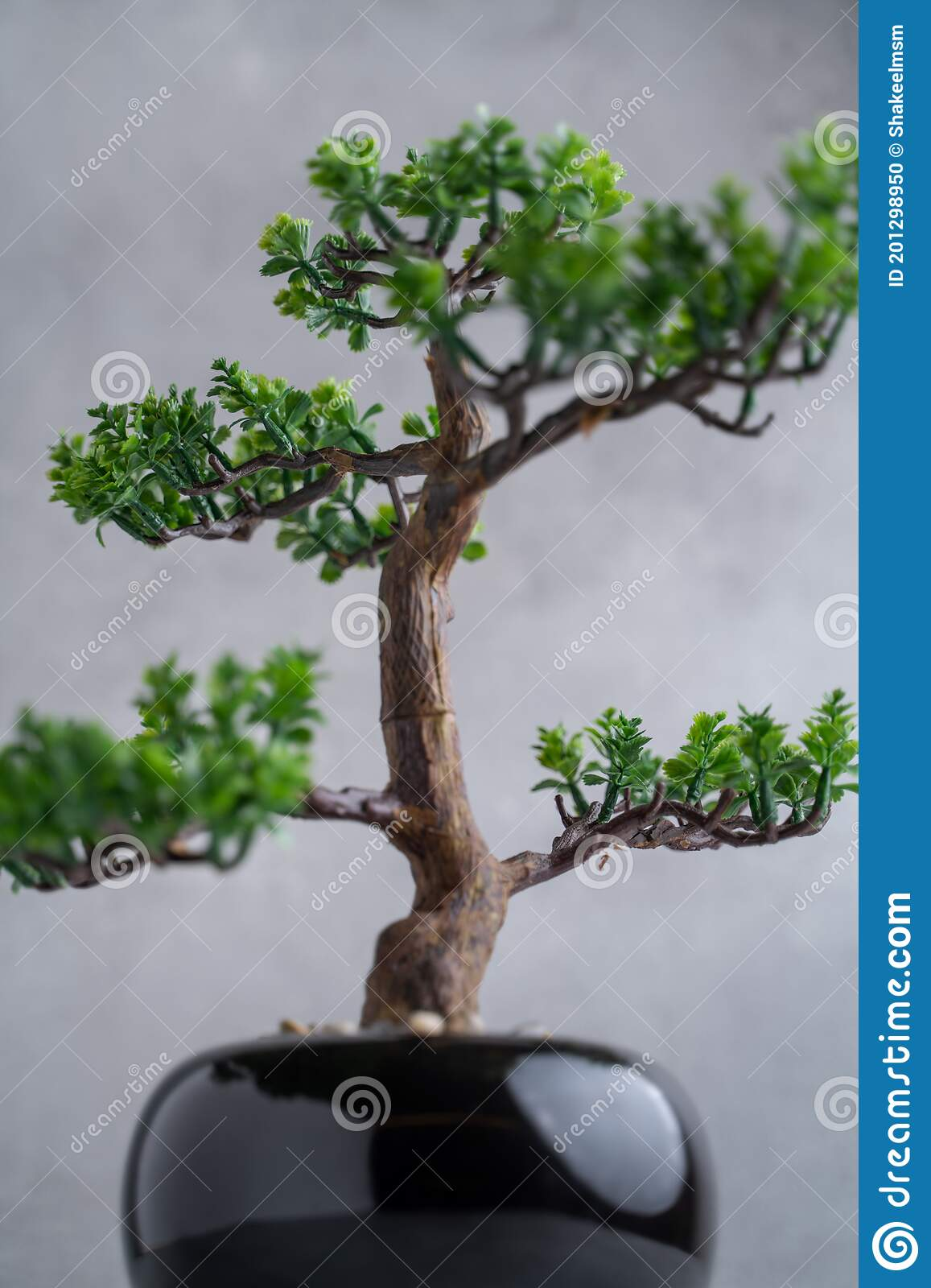 Plastic Bonsai Tree Artificial With A Small Pot On A Gray Background Stock Photo Image Of Decoration Artificial 201298950