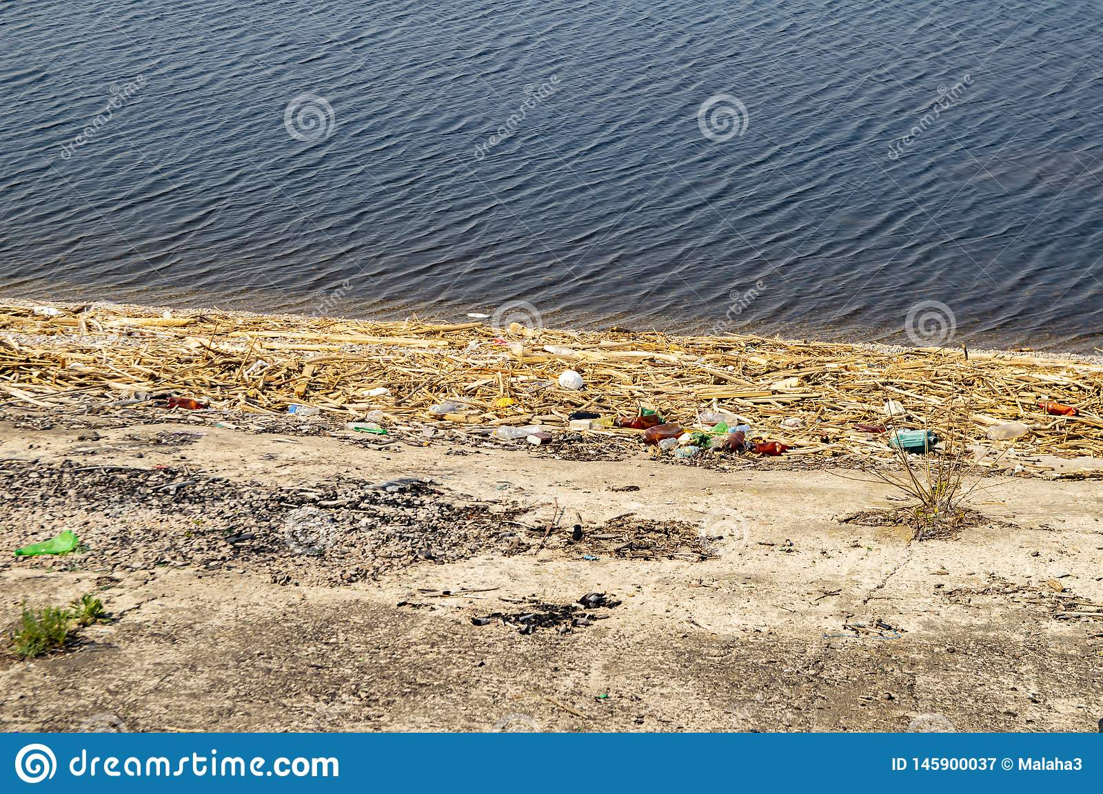 Plastic bottles on the waterfront