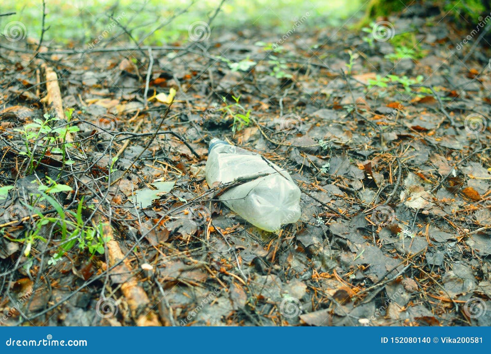 Plastic fles in het bos ter plaatse