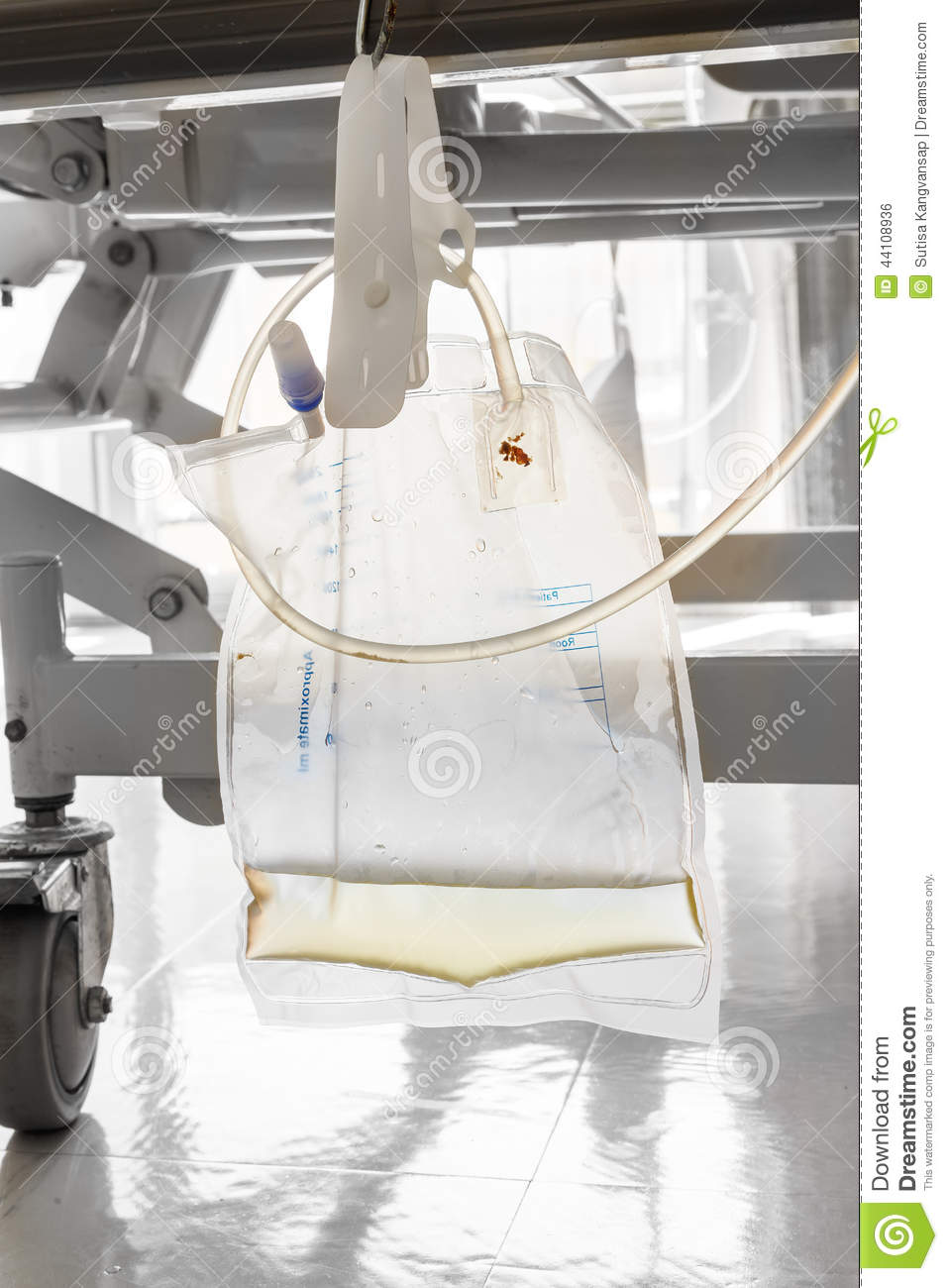 Urine Collection Bag Royalty Free Stock Image