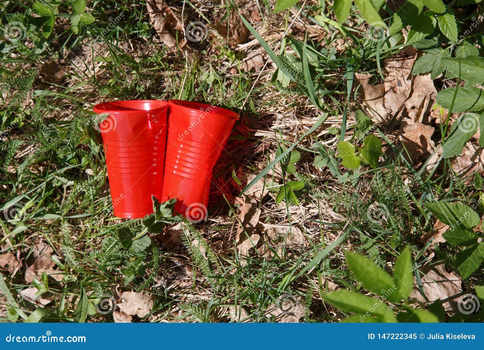 Plastikabfall im Wald