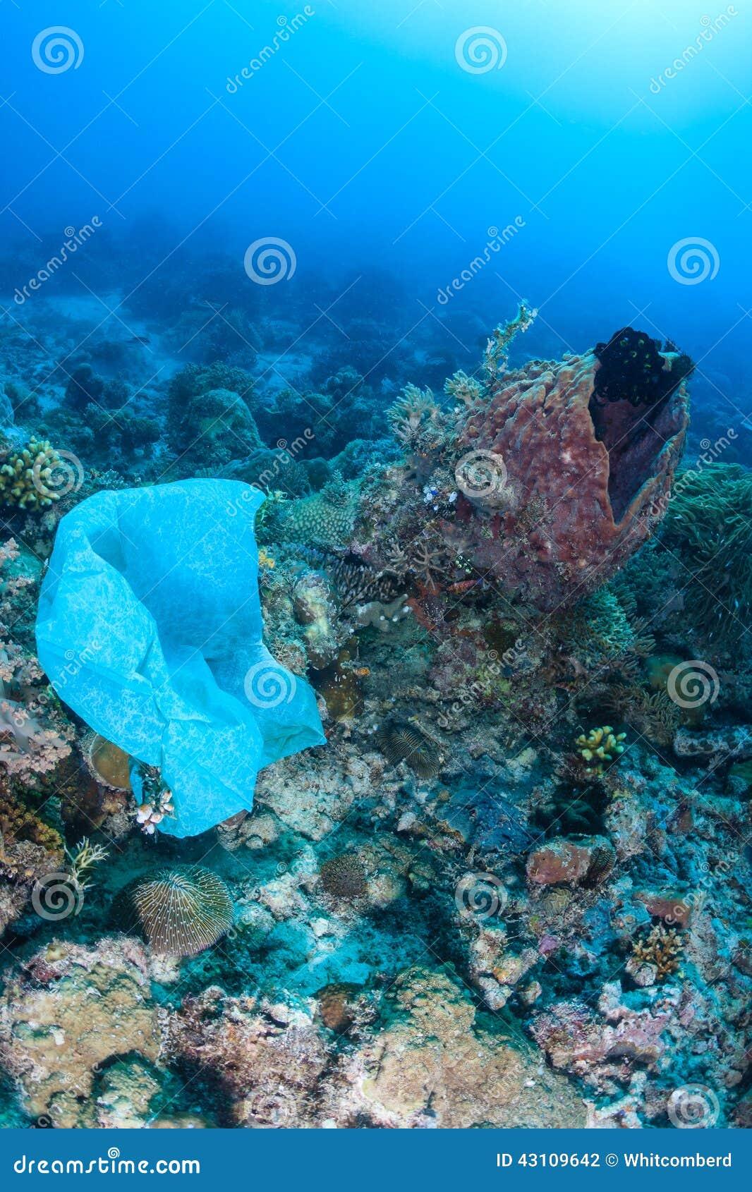 Plastpåsen förorenar en korallrev