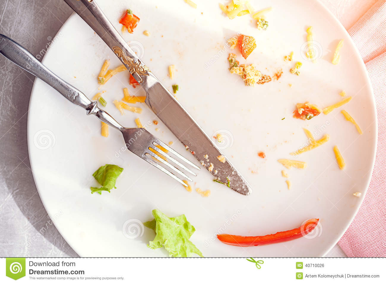 Plate With Crumbs Food And Used Fork Stock Photo Image