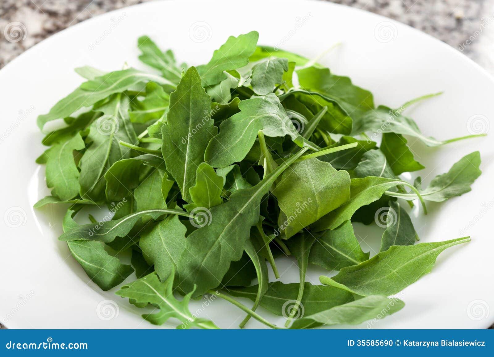 Fresh Leaves Plate Rocket Salad