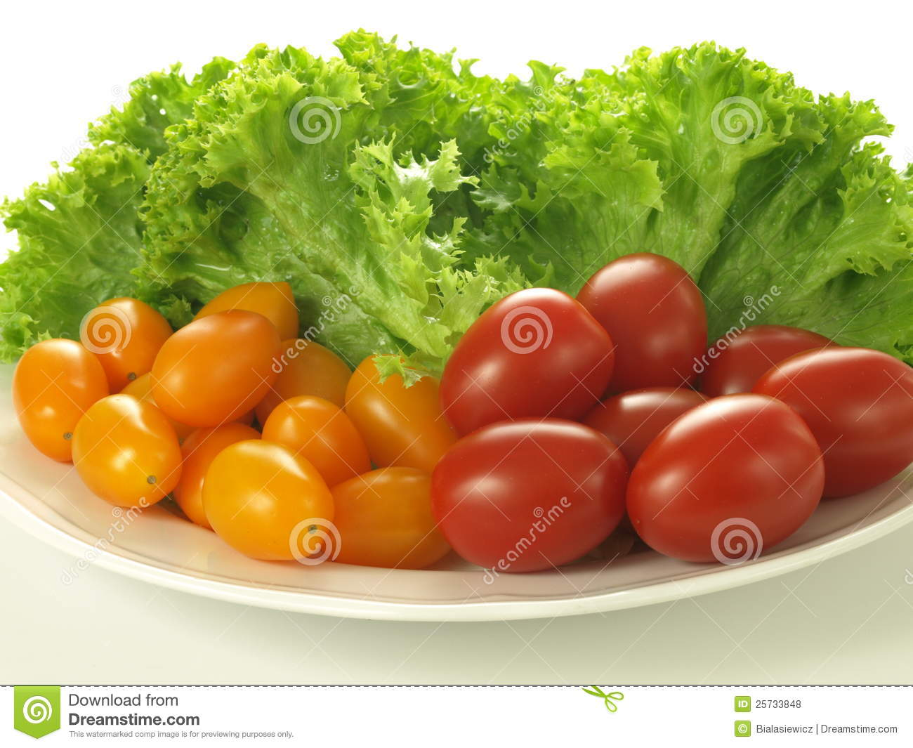 Plate with tomatoes and salad