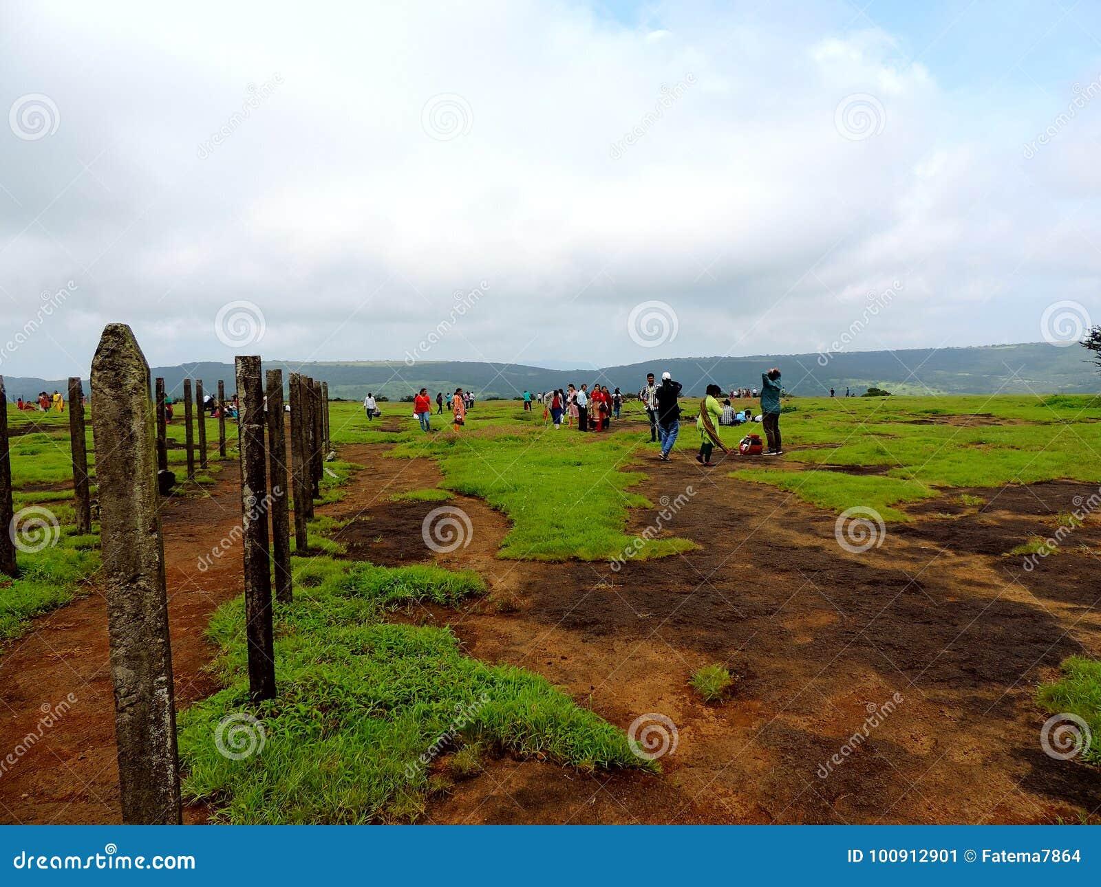 Plateau de Kaas - vallée des fleurs dans le maharashtra, Inde