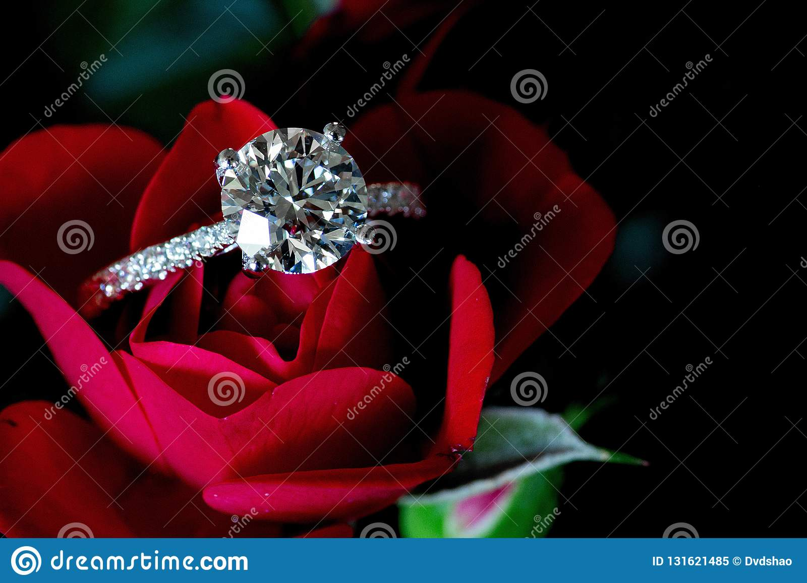 Platina Diamond Ring On Red Rose