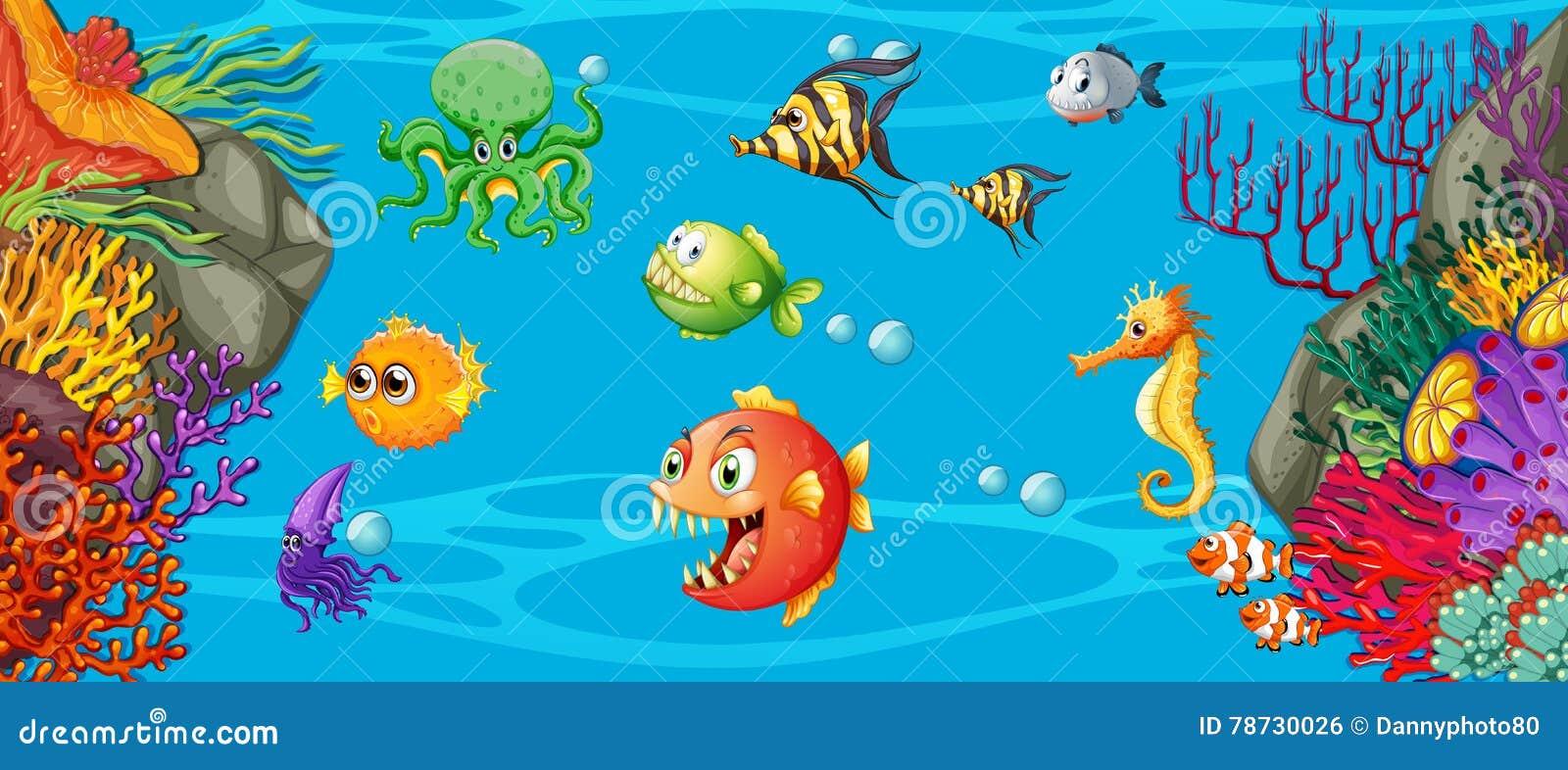 Plats med många undervattens- fisk