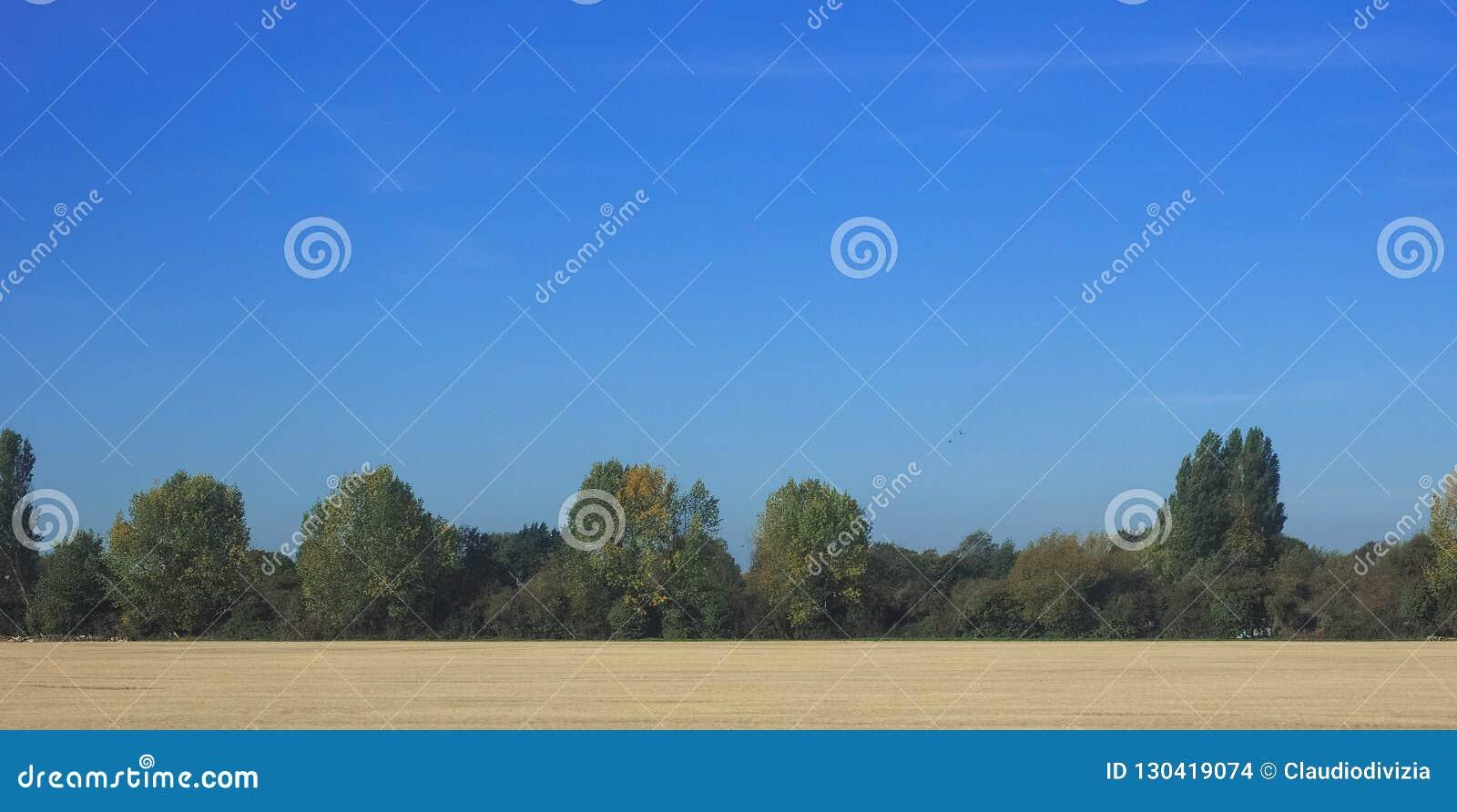 Platteland dichtbij Cambridge