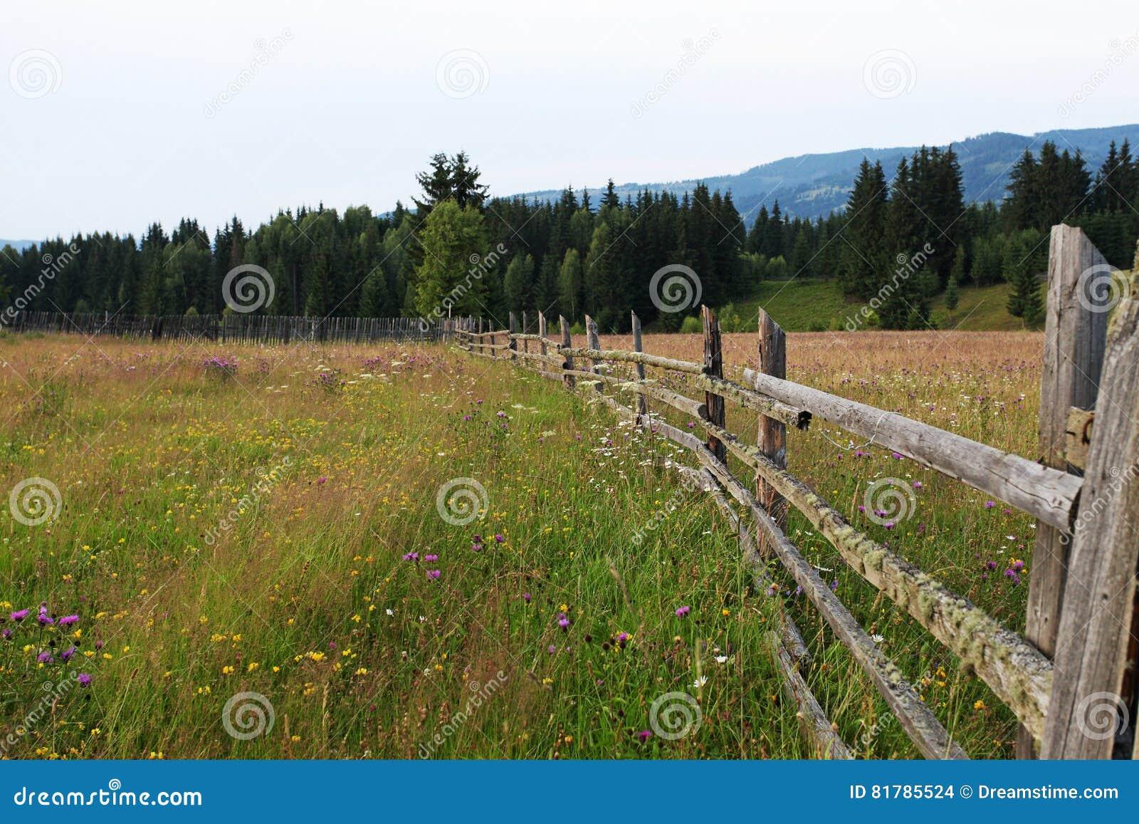 Plattelands houten omheining en weide in Bucovina