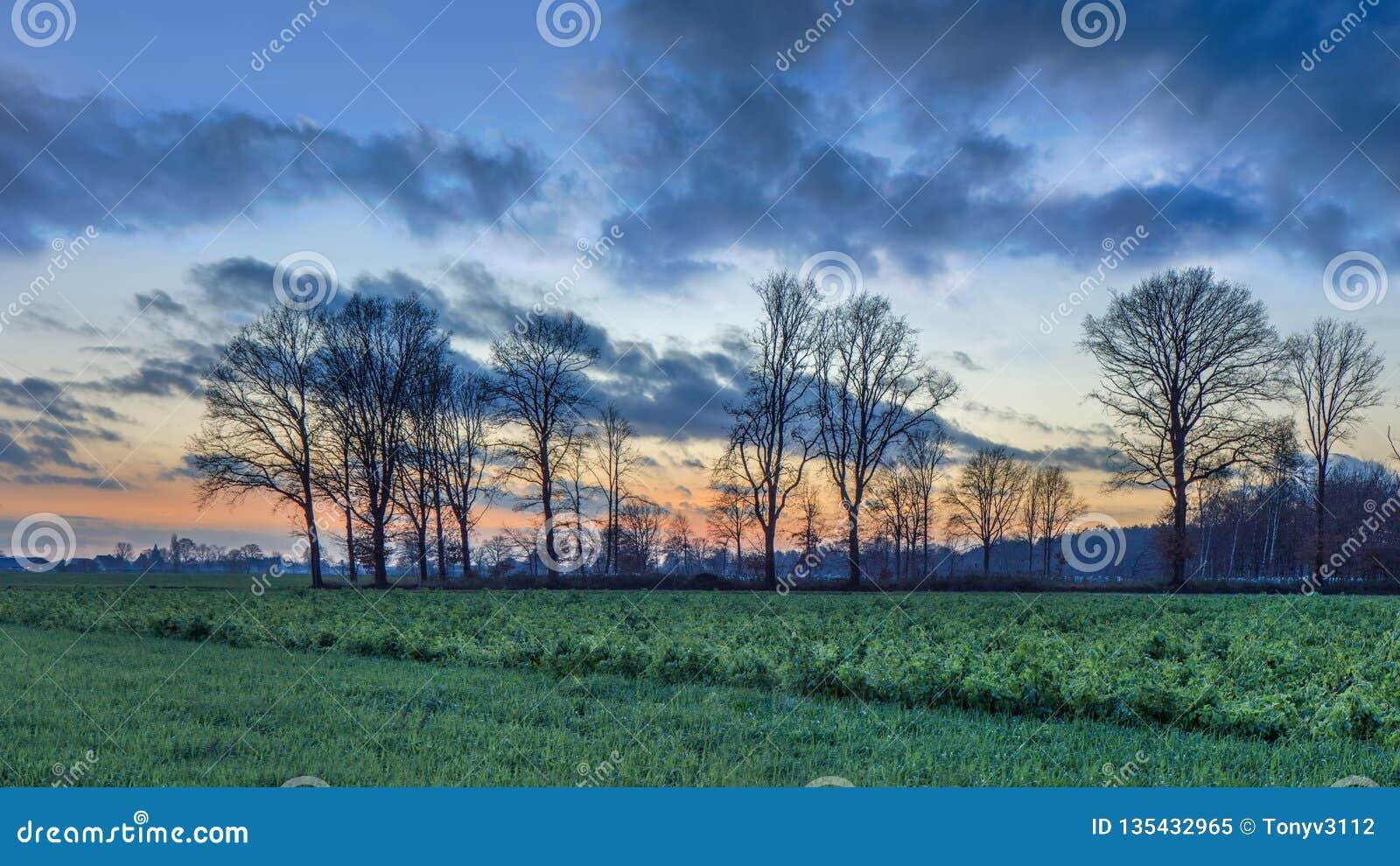 Plattelandslandschap met bomen en een kleurrijke zonsondergang