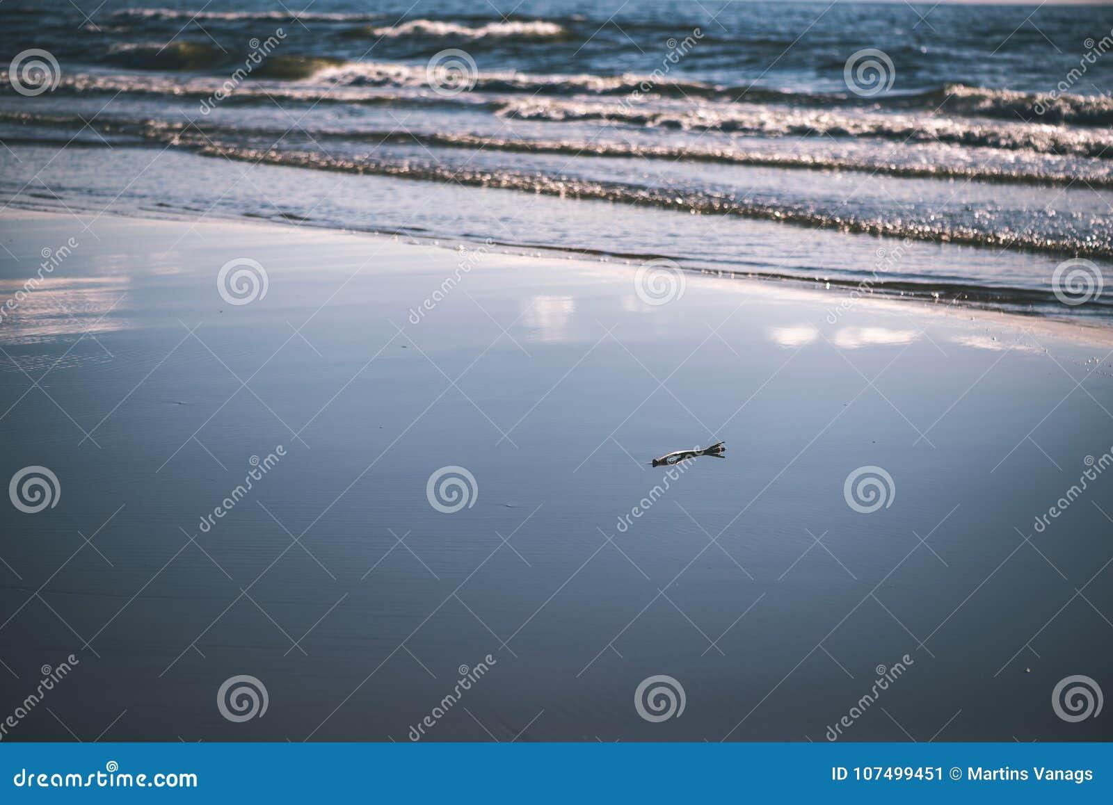 be2e694df91d Playa Cómoda Del Mar Báltico Con El Palillo De Madera - Vintage ...