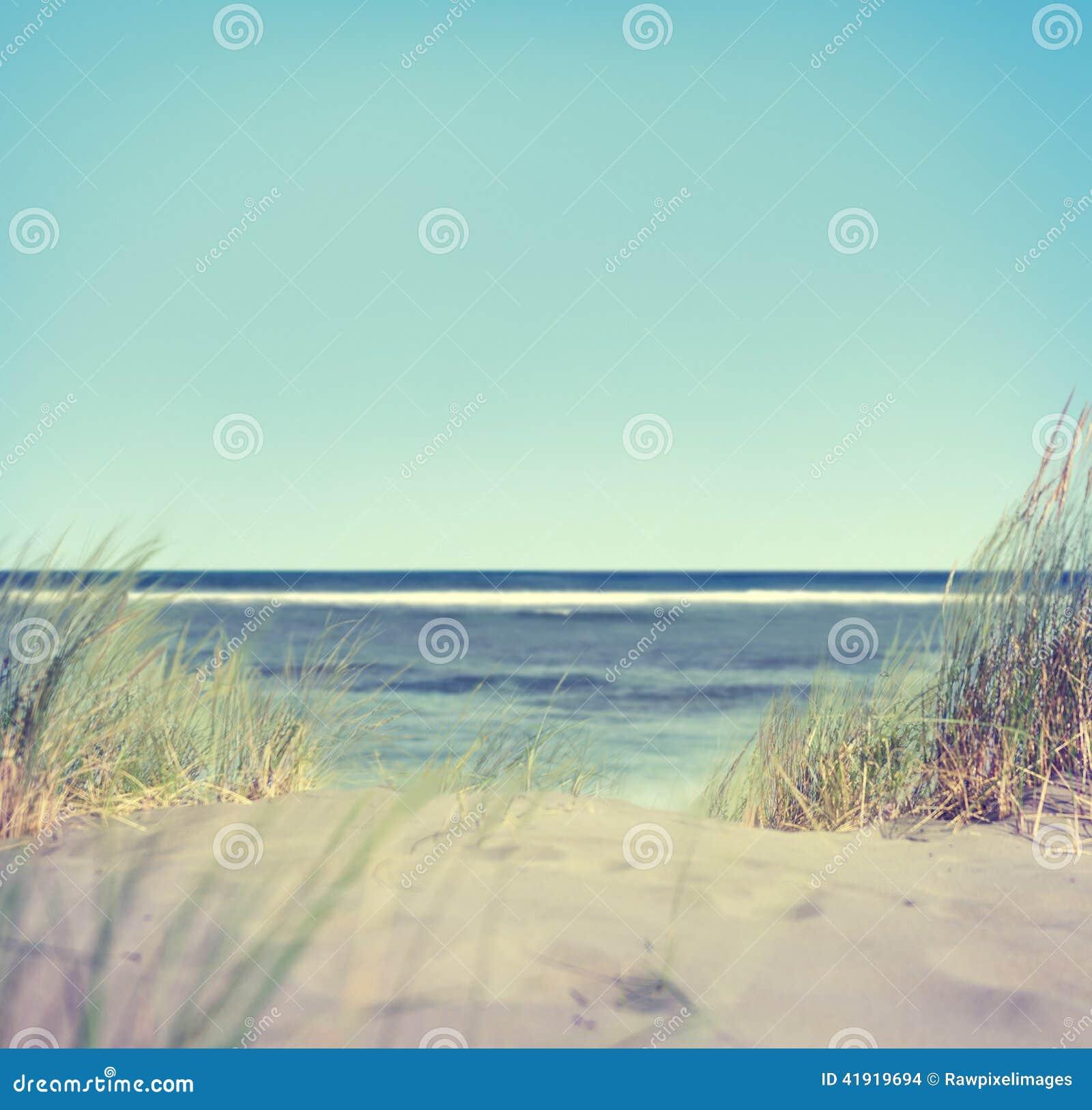 Playa con la hierba y la arena