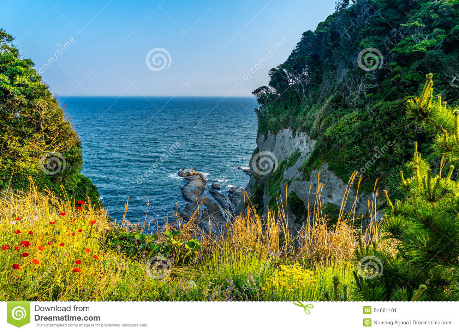Playa coralina ocultada