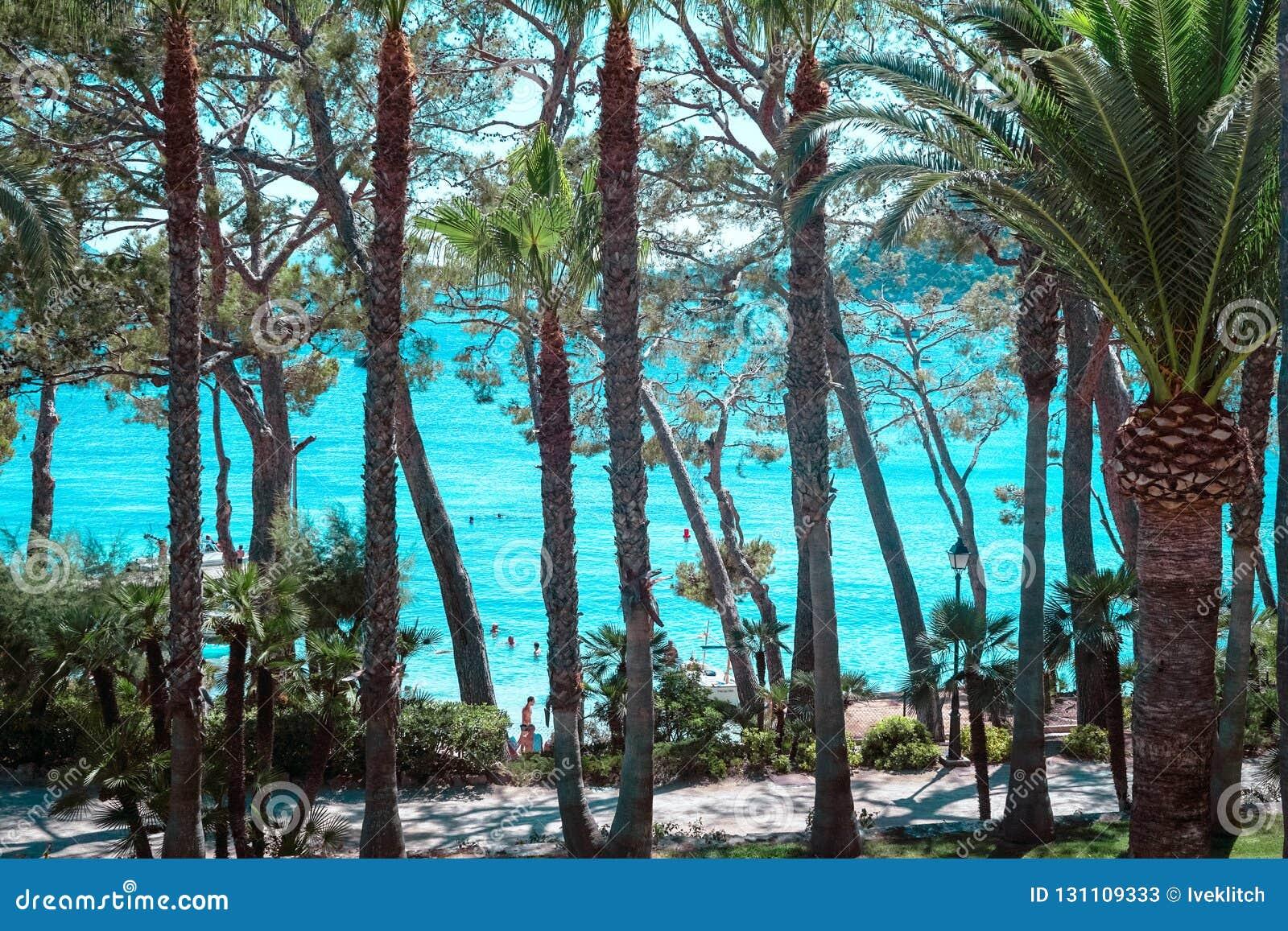 Playa de Formentor Cala Pi de la Posada, playa hermosa en el casquillo Formentor, Palma Mallorca, España