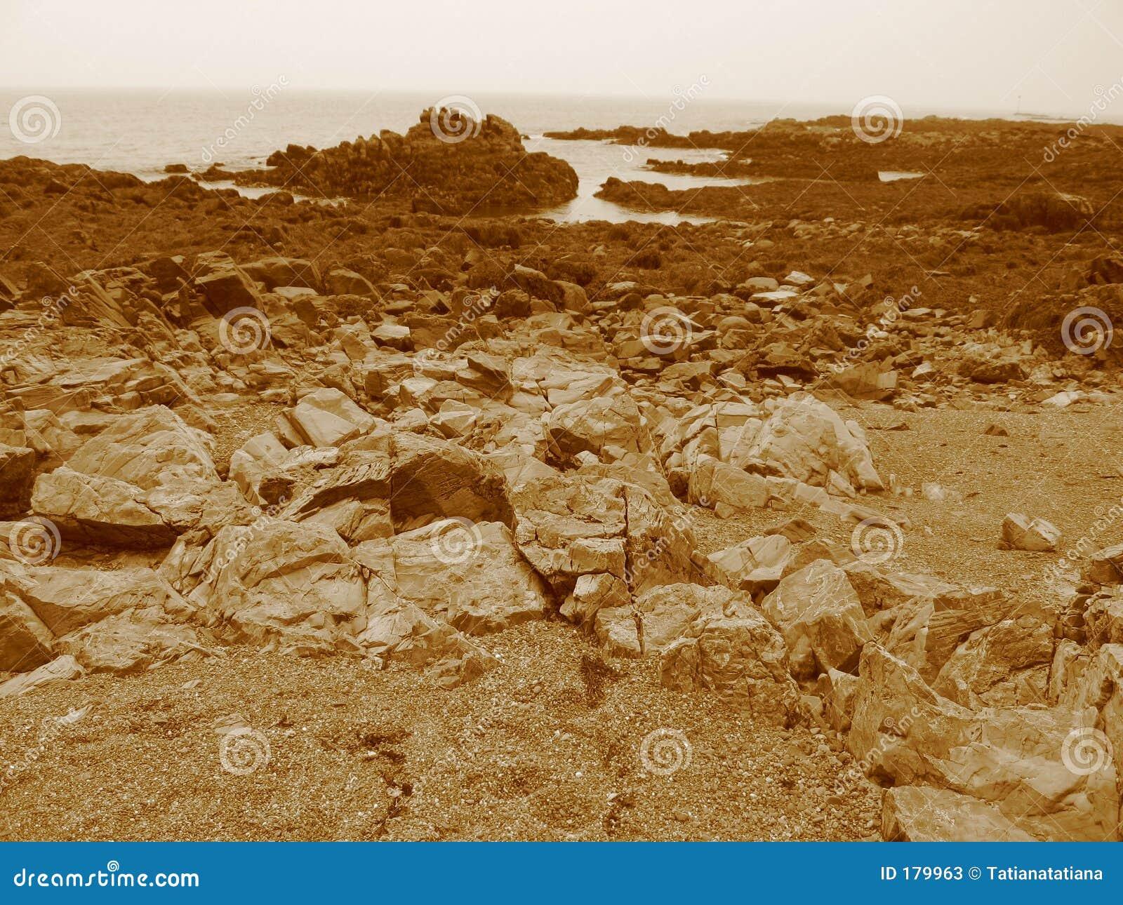 Playa de la sepia