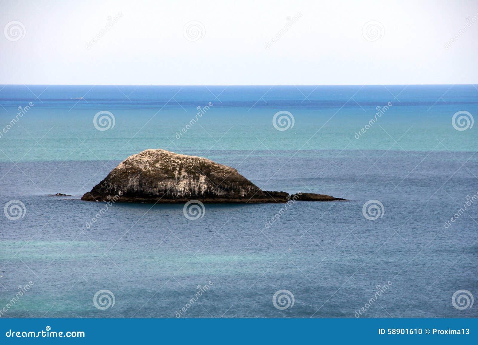 Playa de Muriwai en la costa oeste de la isla del norte Nueva Zelanda
