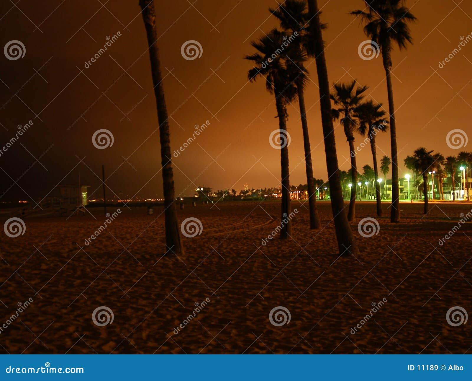 Playa de Venecia