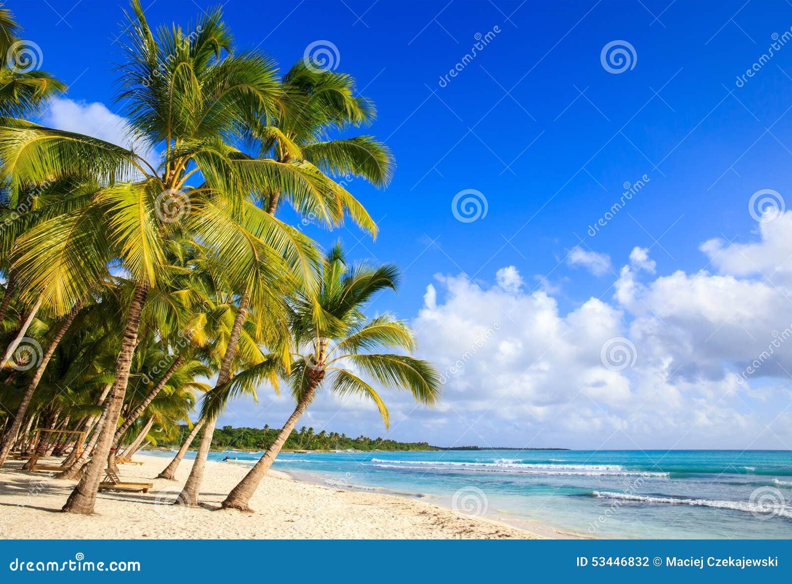 Playa del Caribe en la República Dominicana