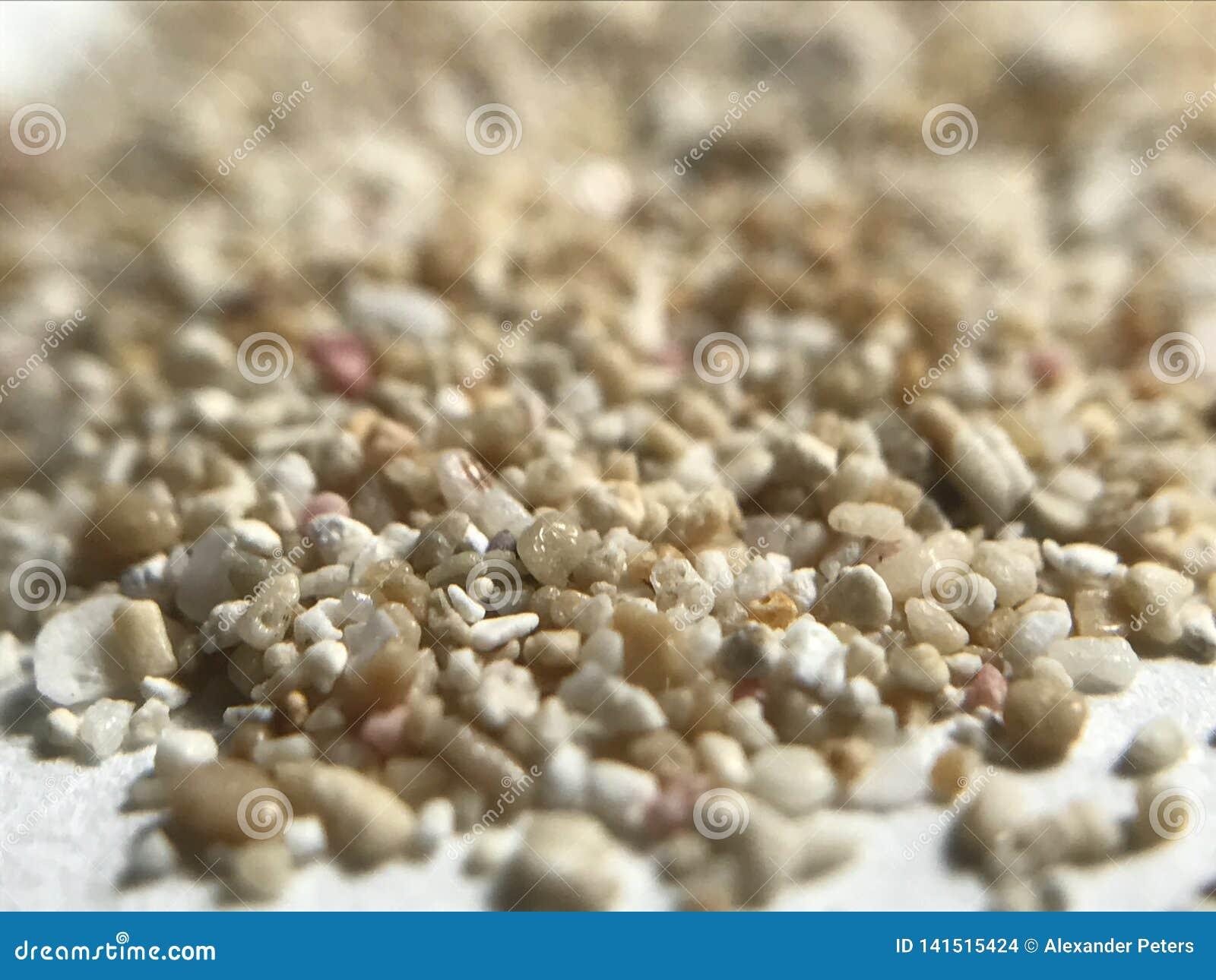 Playa Del Carmen Sand