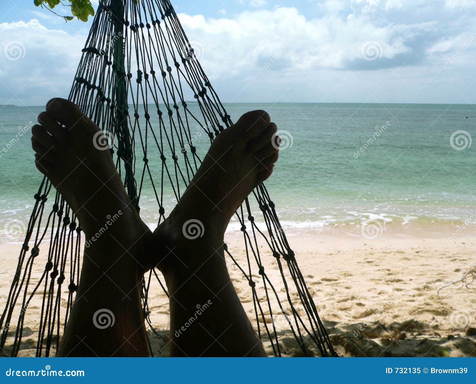 Playa del coral de los pies de la hamaca foto de archivo libre de regal as imagen 732135 - Fotos de hamacas en la playa ...