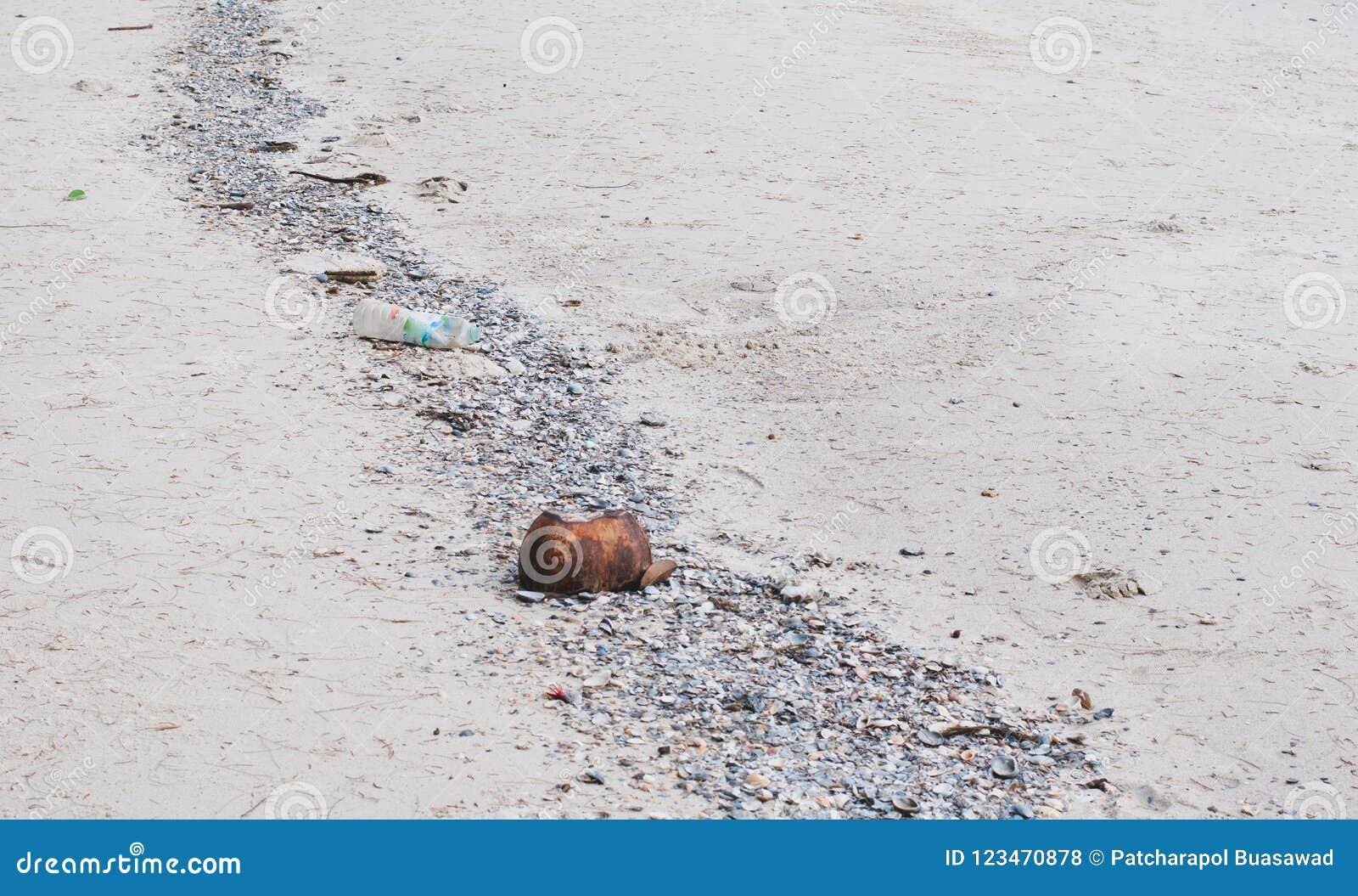 Playa del mar que hace una roca, una cáscara del coco, y un gabage alinear adentro encendido