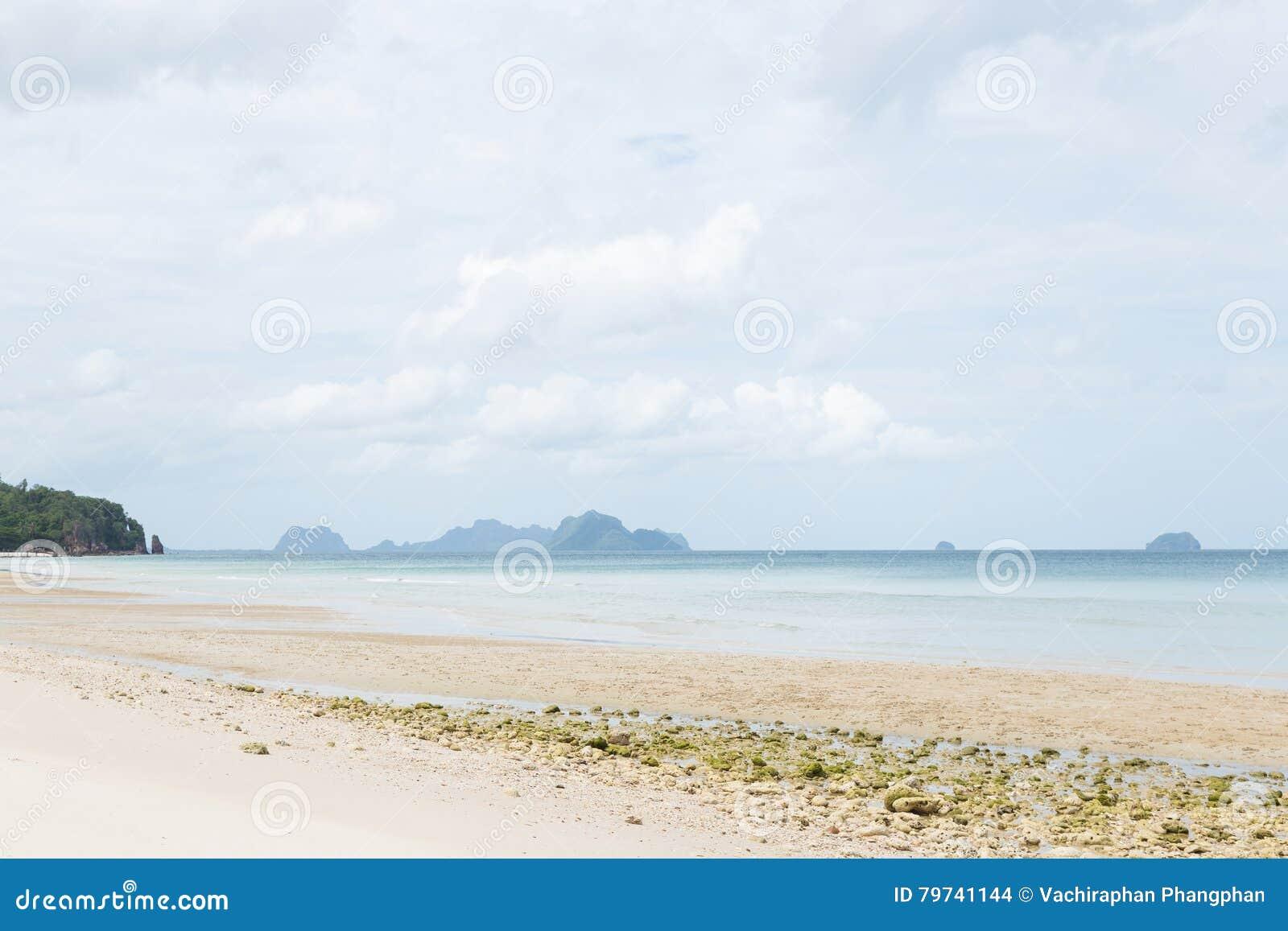 Playa del mar y de la arena