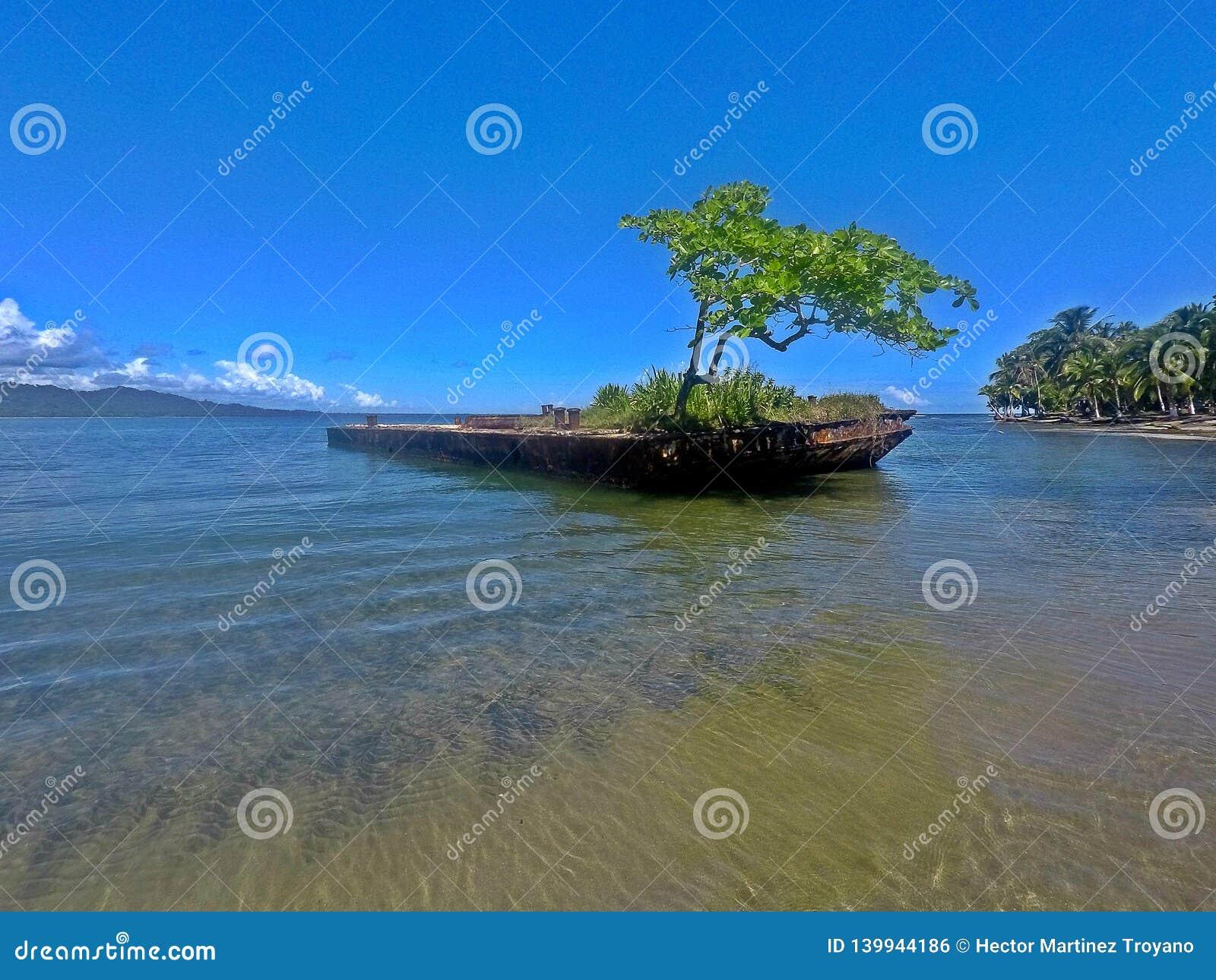 Playa en el mar del Caribe, Costa Rica de Puerto Viejo