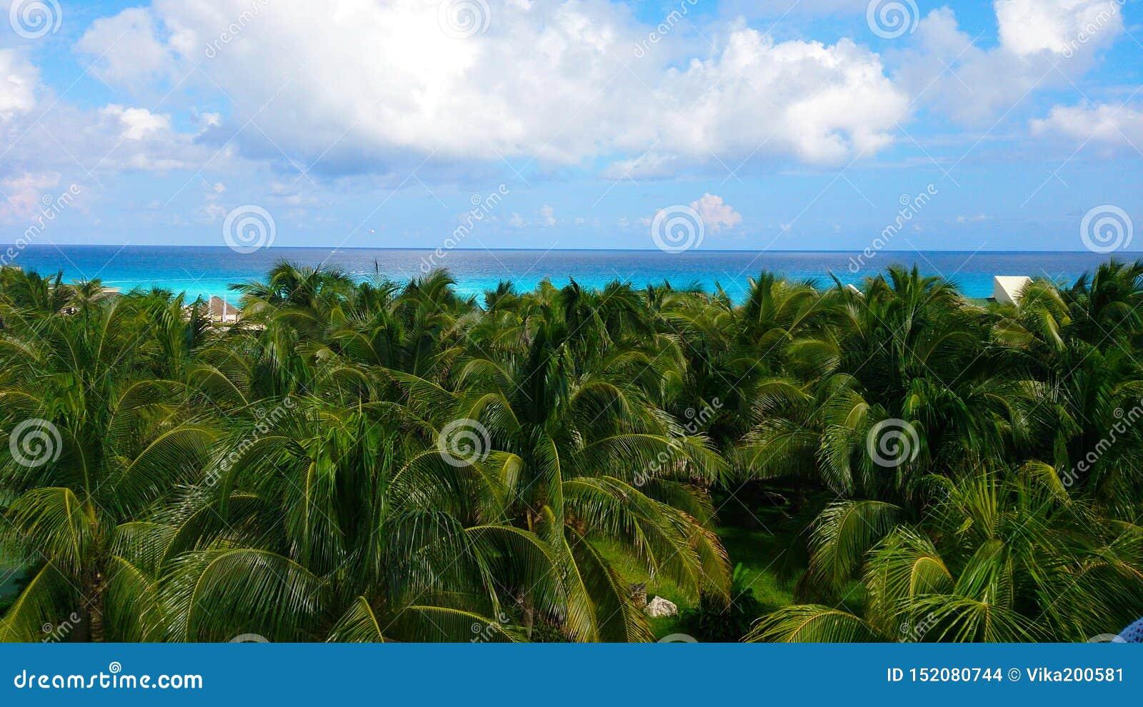 Playa hermosa Concepto de las vacaciones de verano y de las vacaciones para el turismo Paisaje tropical inspirado