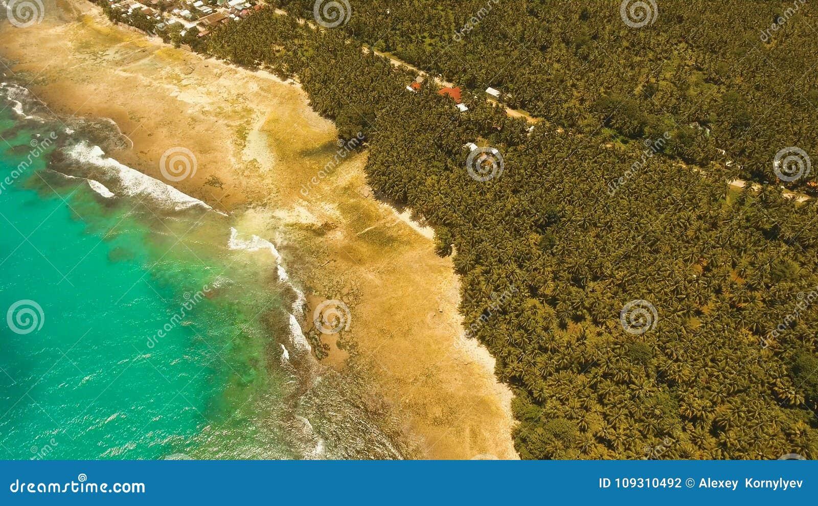 Playa hermosa de la visión aérea en una isla tropical Filipinas, Siargao