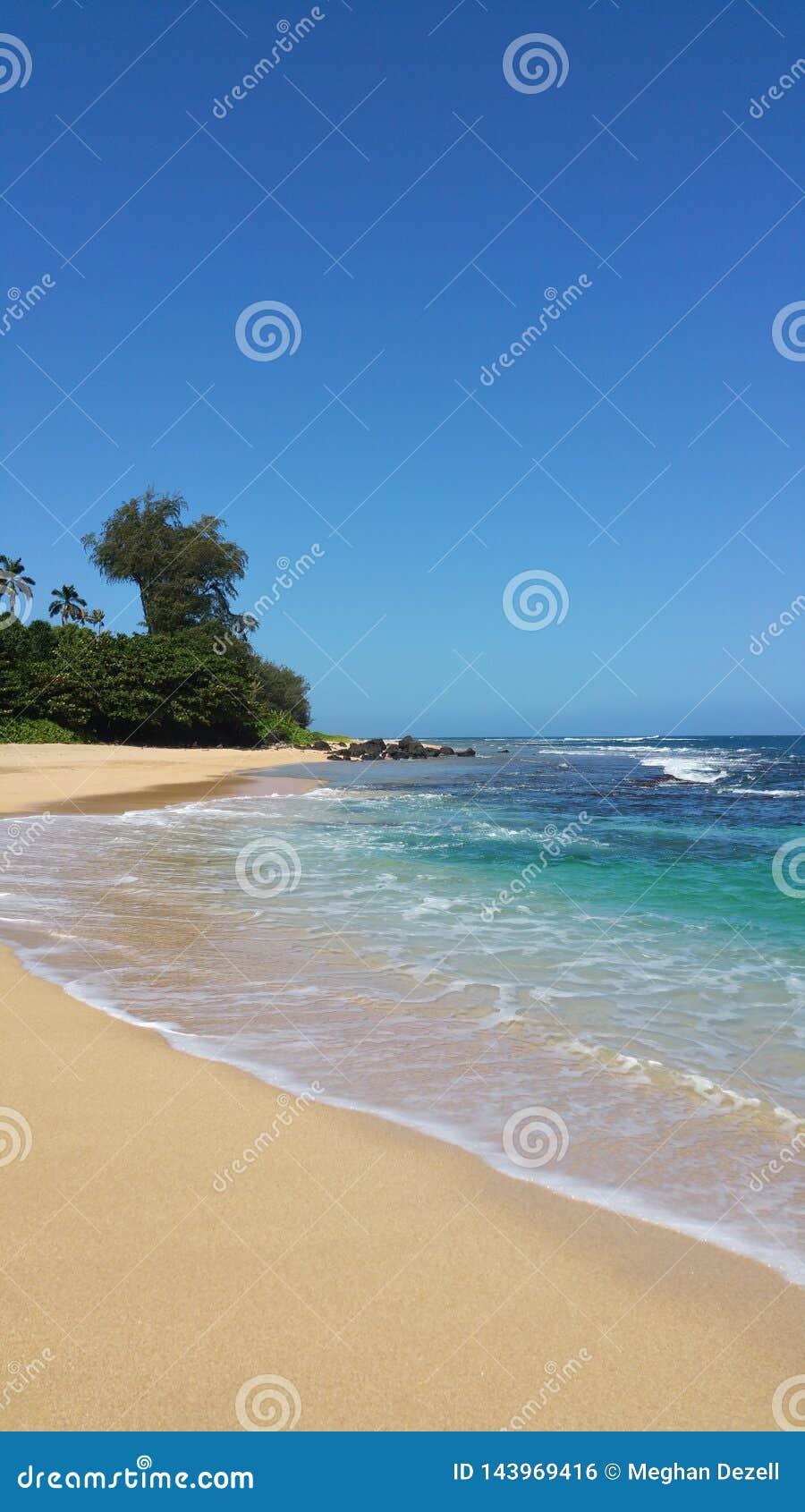 Playa por favor