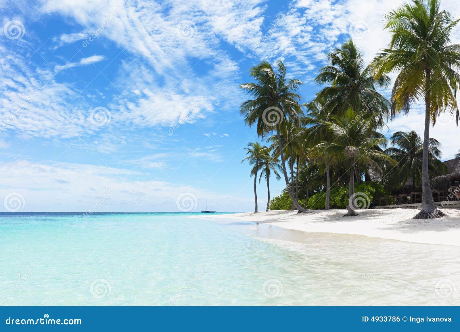 Playa tópica