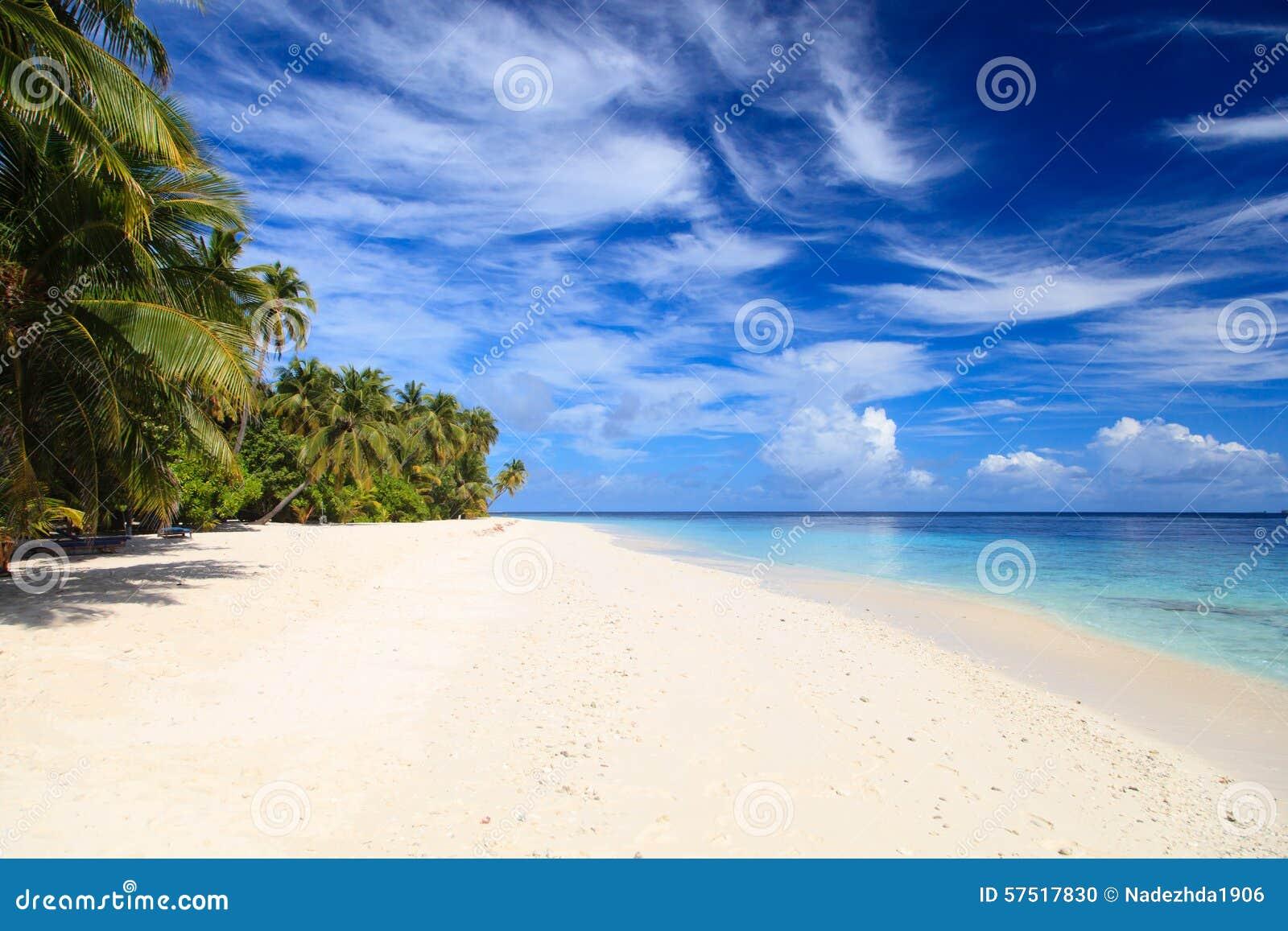 Playa tropical de la arena concepto de las vacaciones for Arena de playa precio
