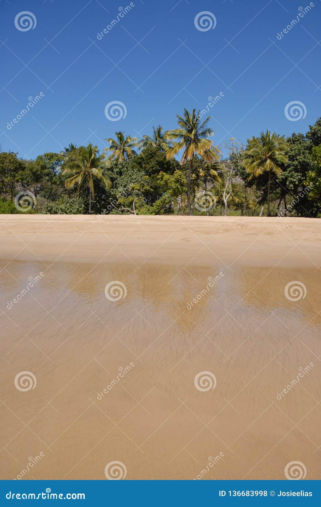 Playa tropical en Queensland del norte lejano, Australia