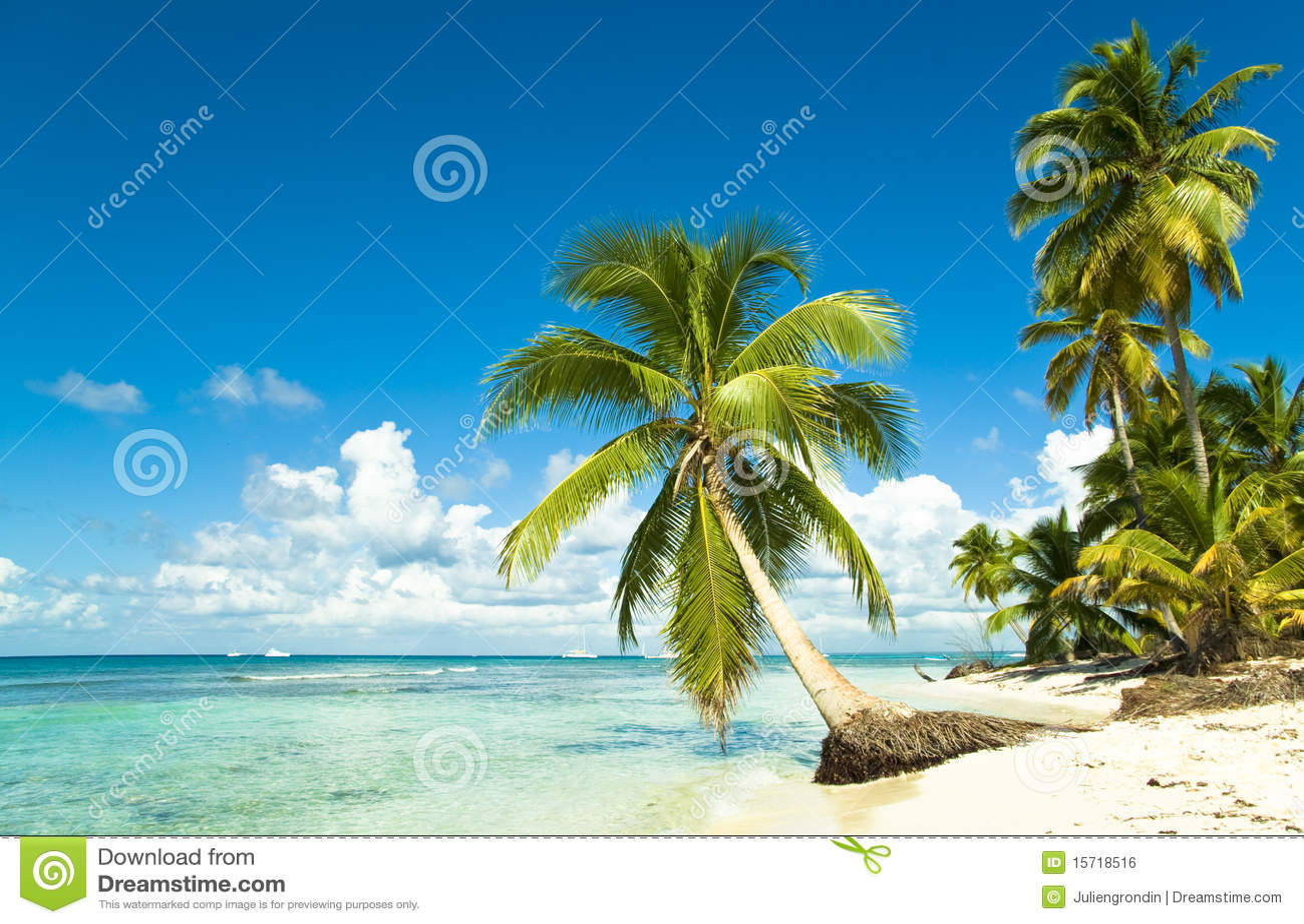 Playa tropical idílica