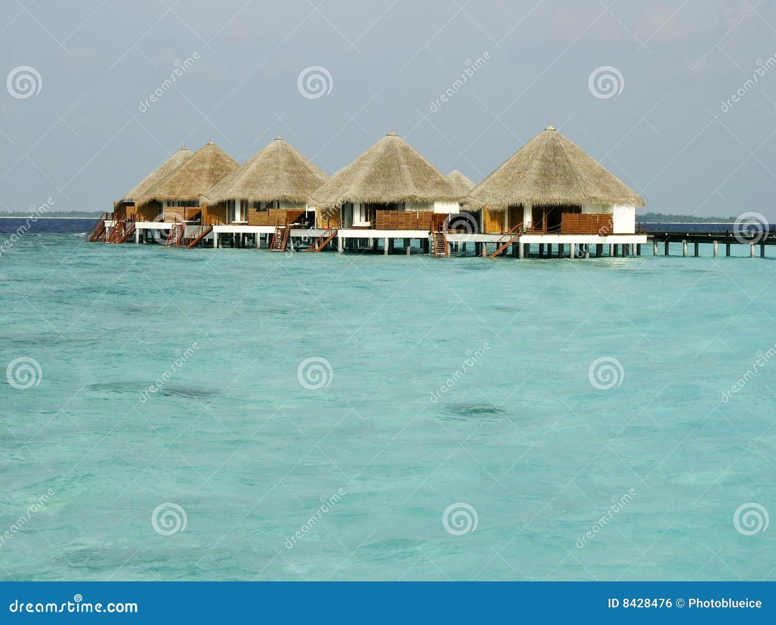 Playa y caba as tropicales en la isla de maldives foto de - Cabanas en la playa ...