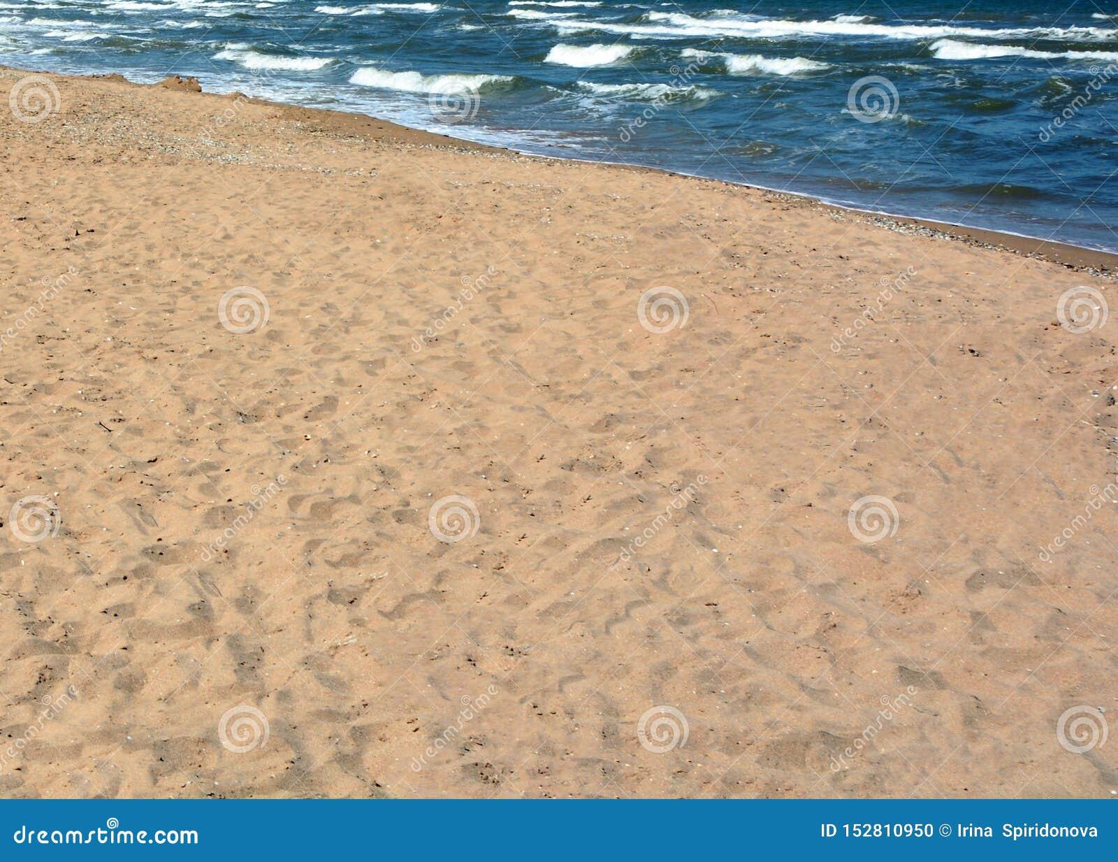 Playa y mar de Sandy