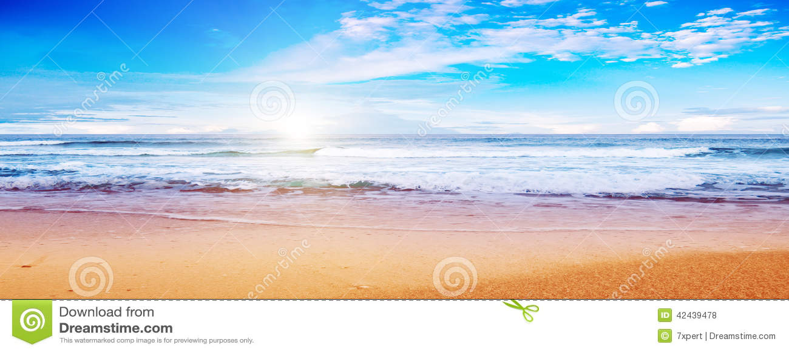 Playa y océano