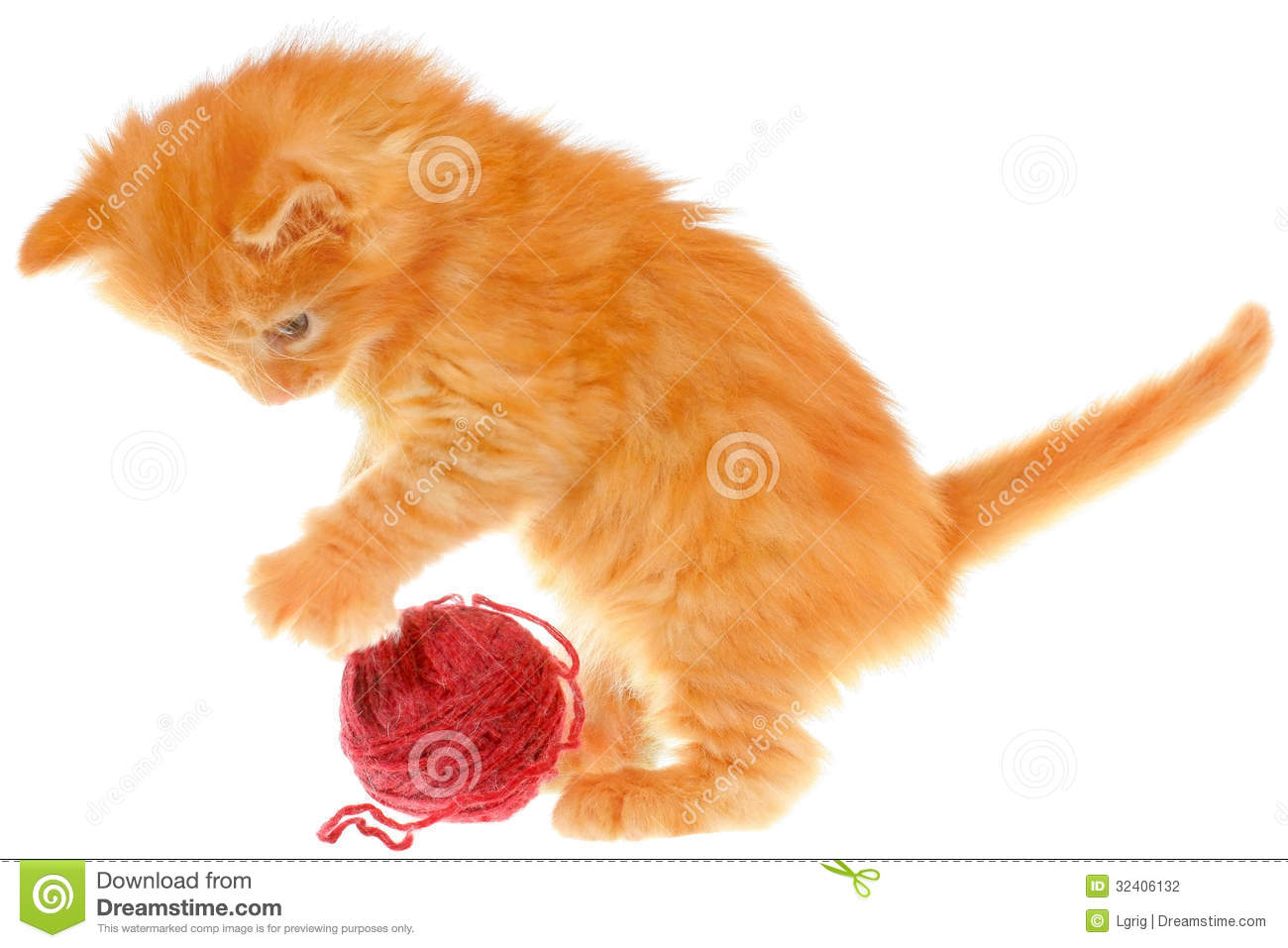 Playful red haired kitten with a ball
