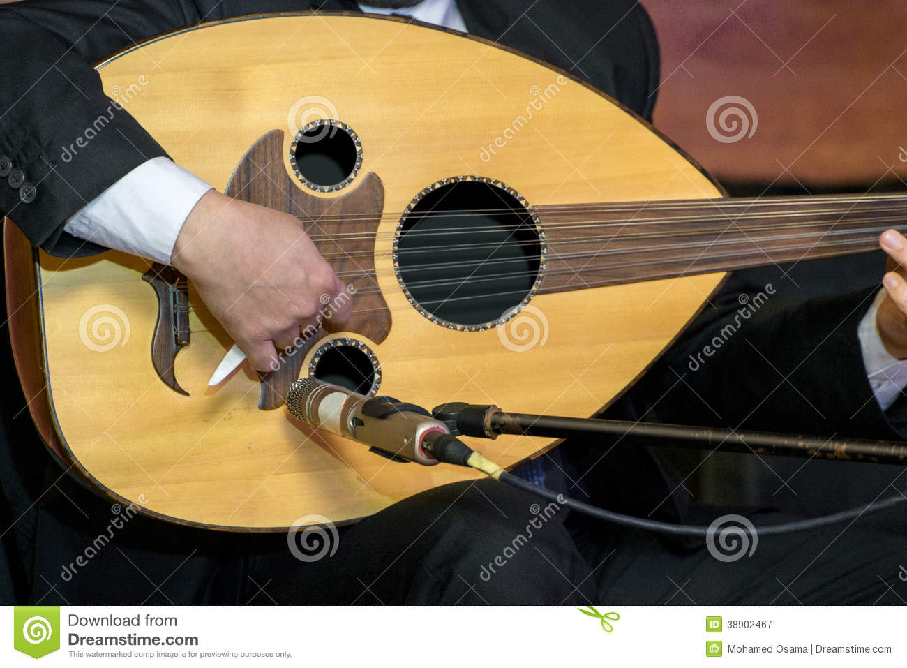Playing Lute stock image  Image of detail, closeup, fingers - 38902467