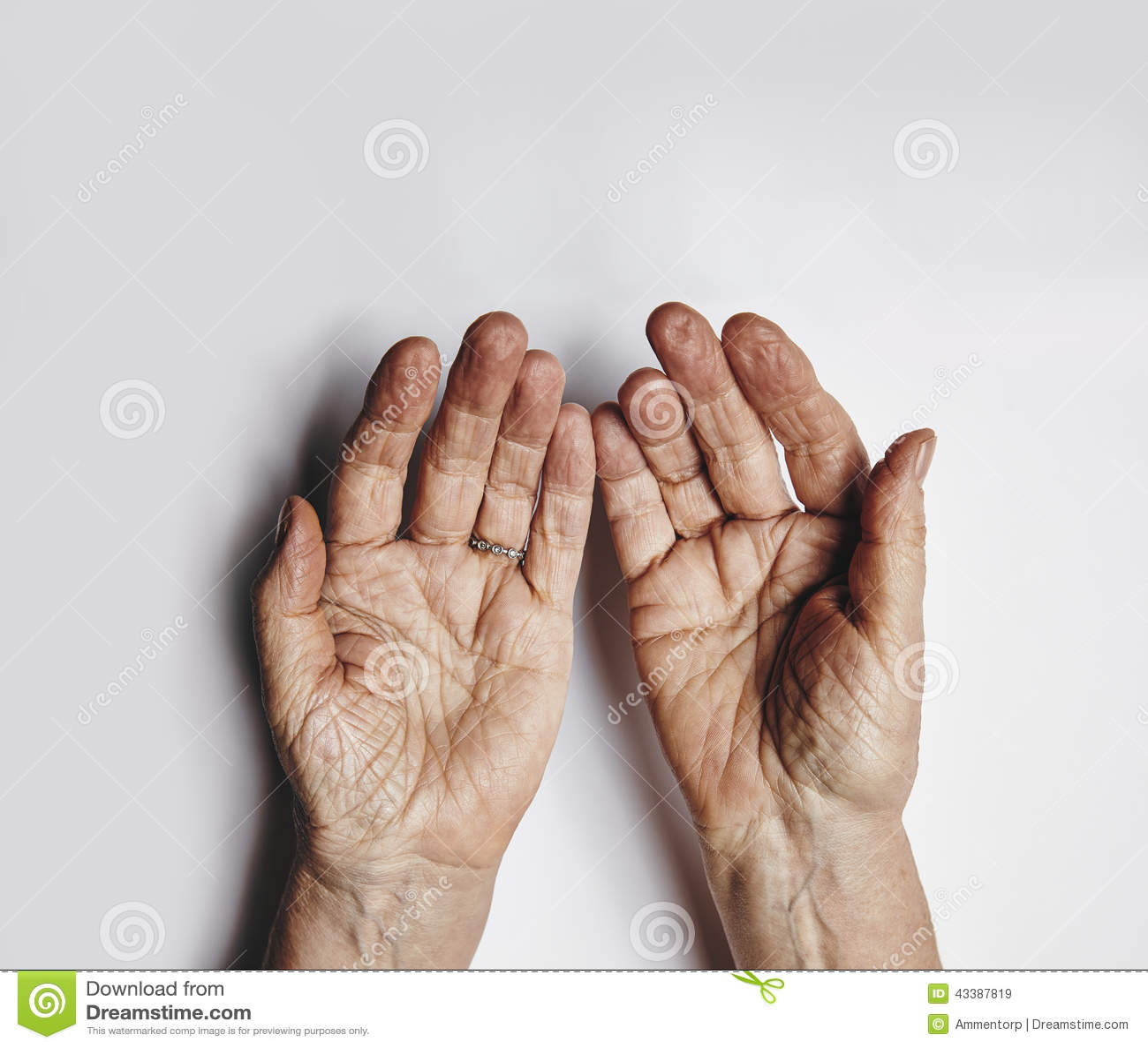 Elder care business plan