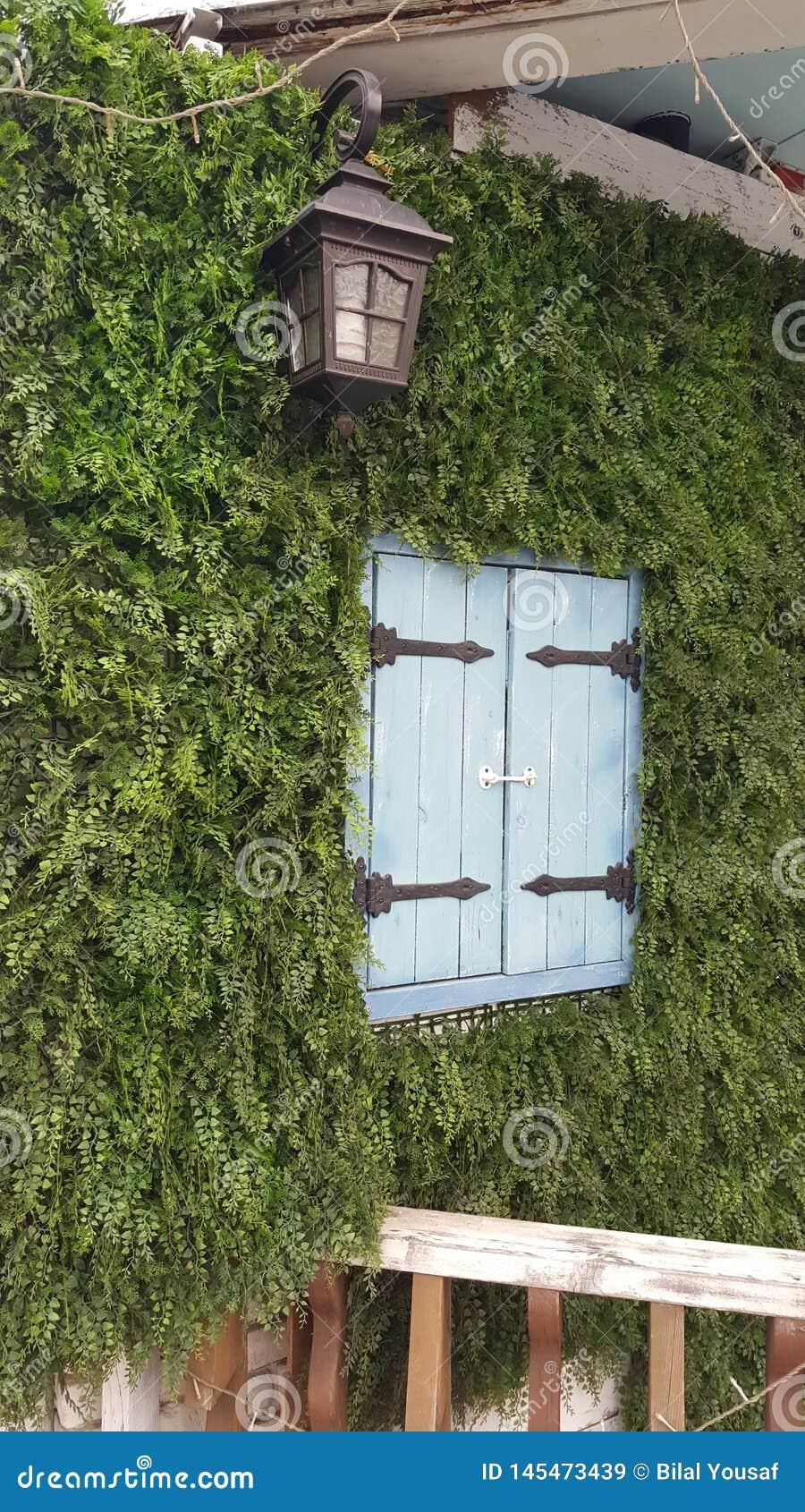 Plenerowy Piękny okno
