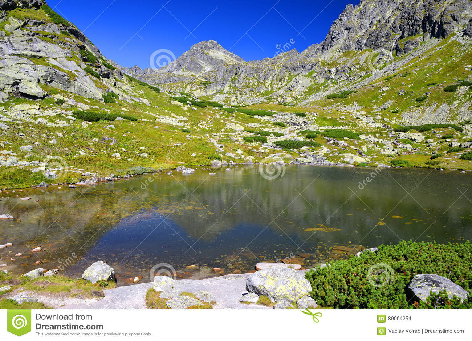 Pleso nad Skokom in Mlynicka Valley, Vysoke Tatry High Tatras, Slovakia