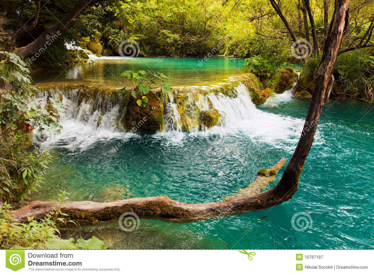 Download Plitvice lakes in Croatia stock image. Image of background - 10767197