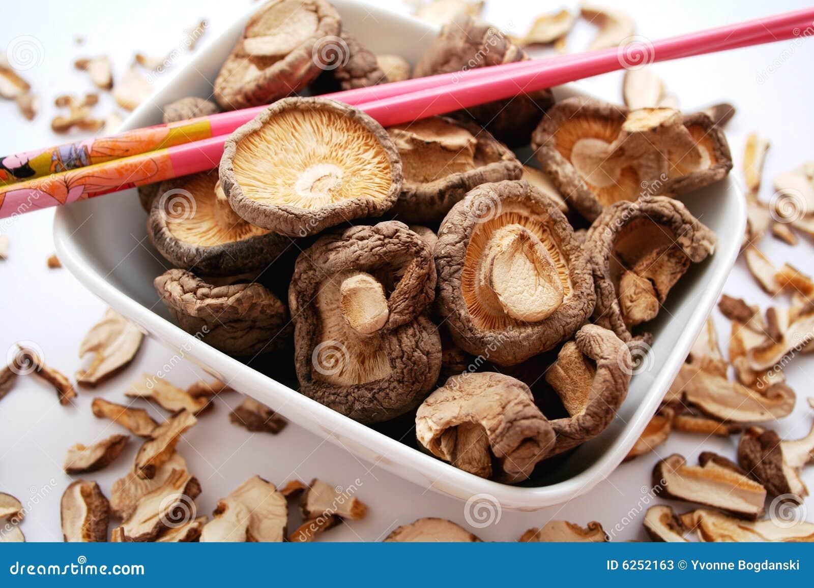 Plocka svamp shiitaken