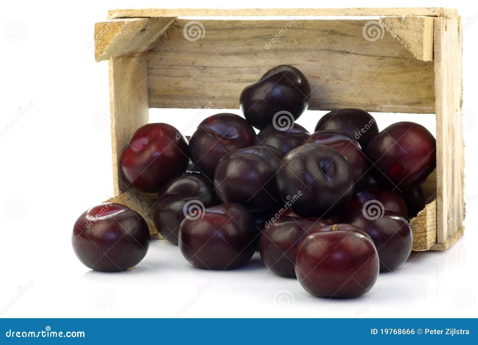 Plombs frais dans une caisse en bois