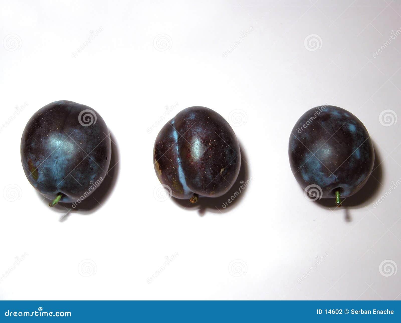 Plommoner tre