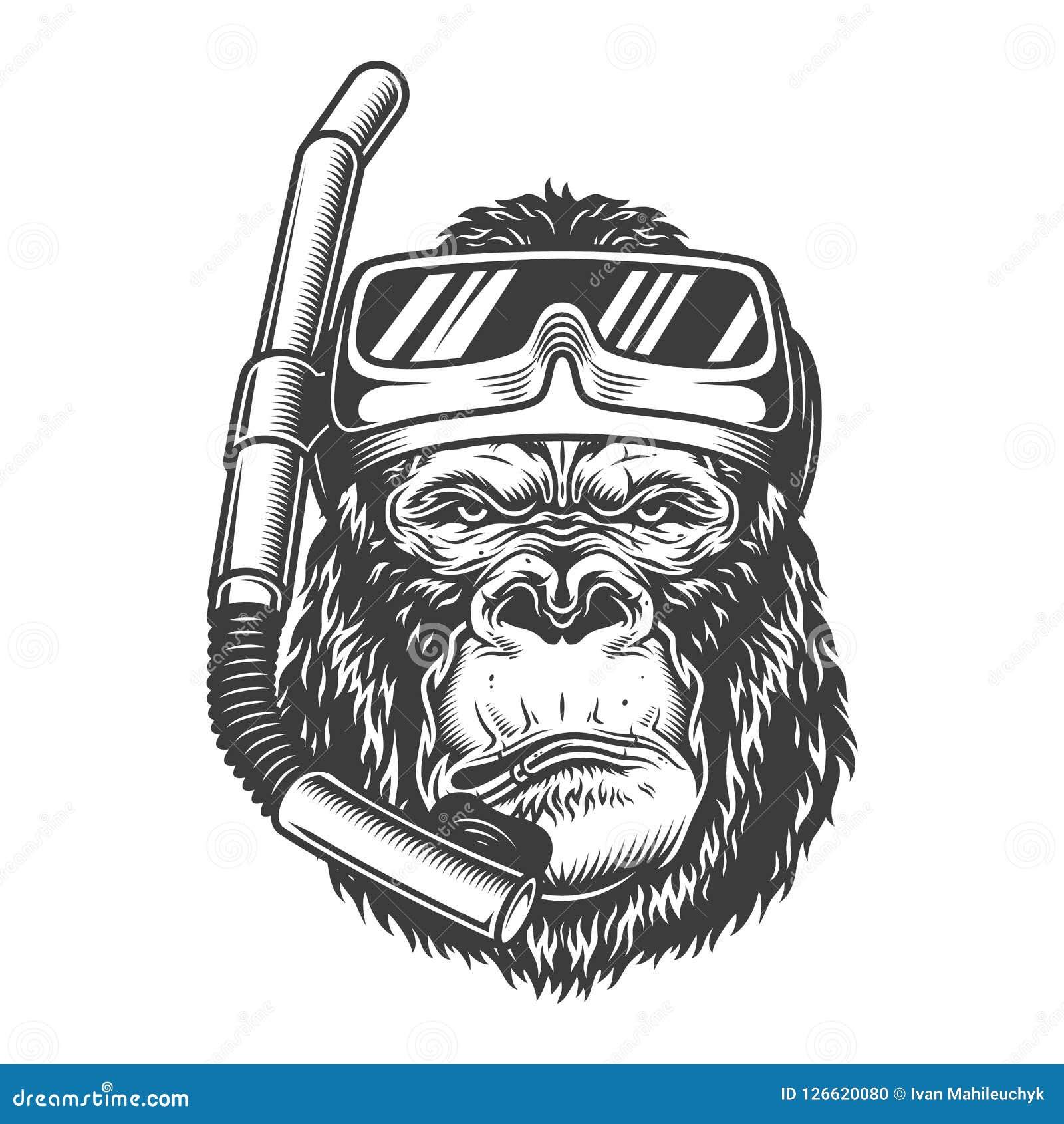 Plongeur arrogant de gorille de vintage